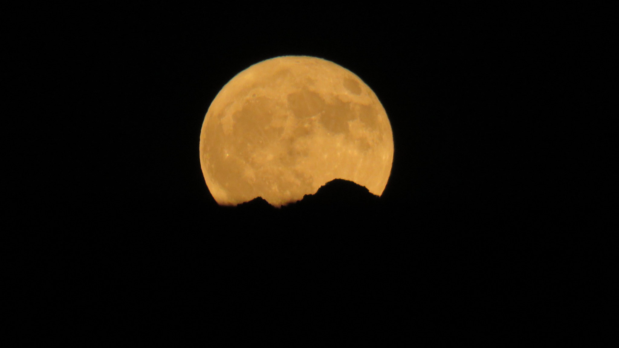 Harvest moon by Terry Smith