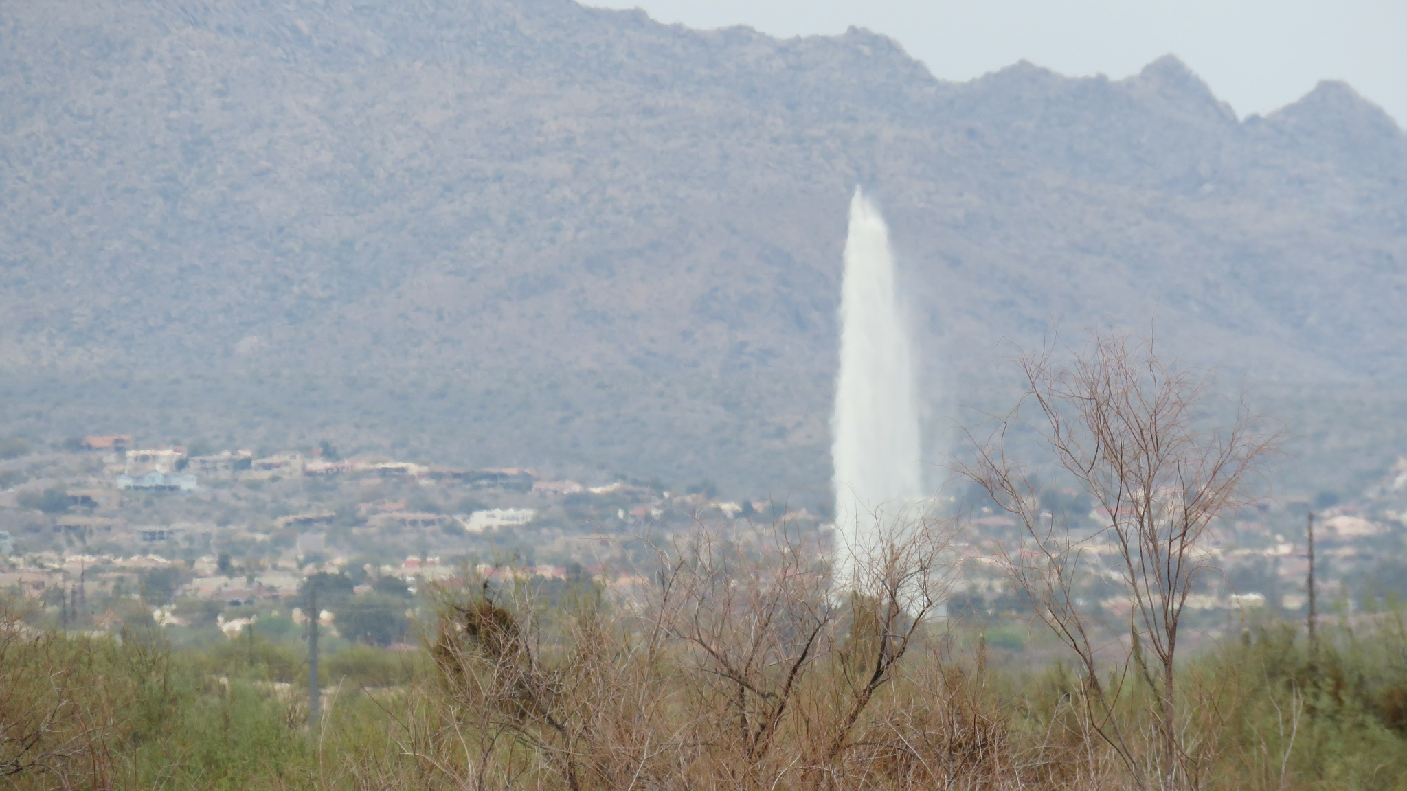 Fountain  in Fountain Hills by Terry Smith