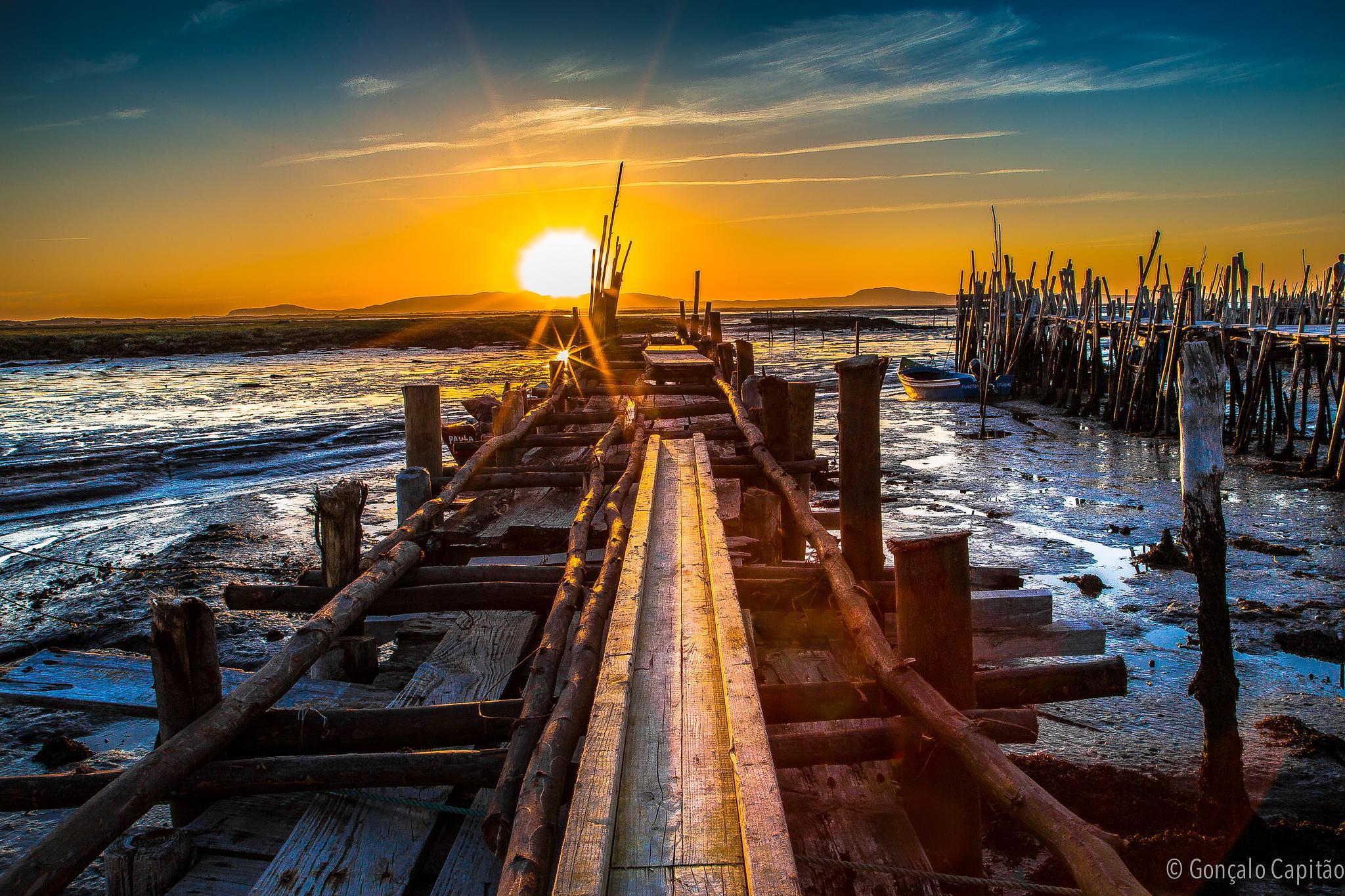 sunset by goncaloacapitao