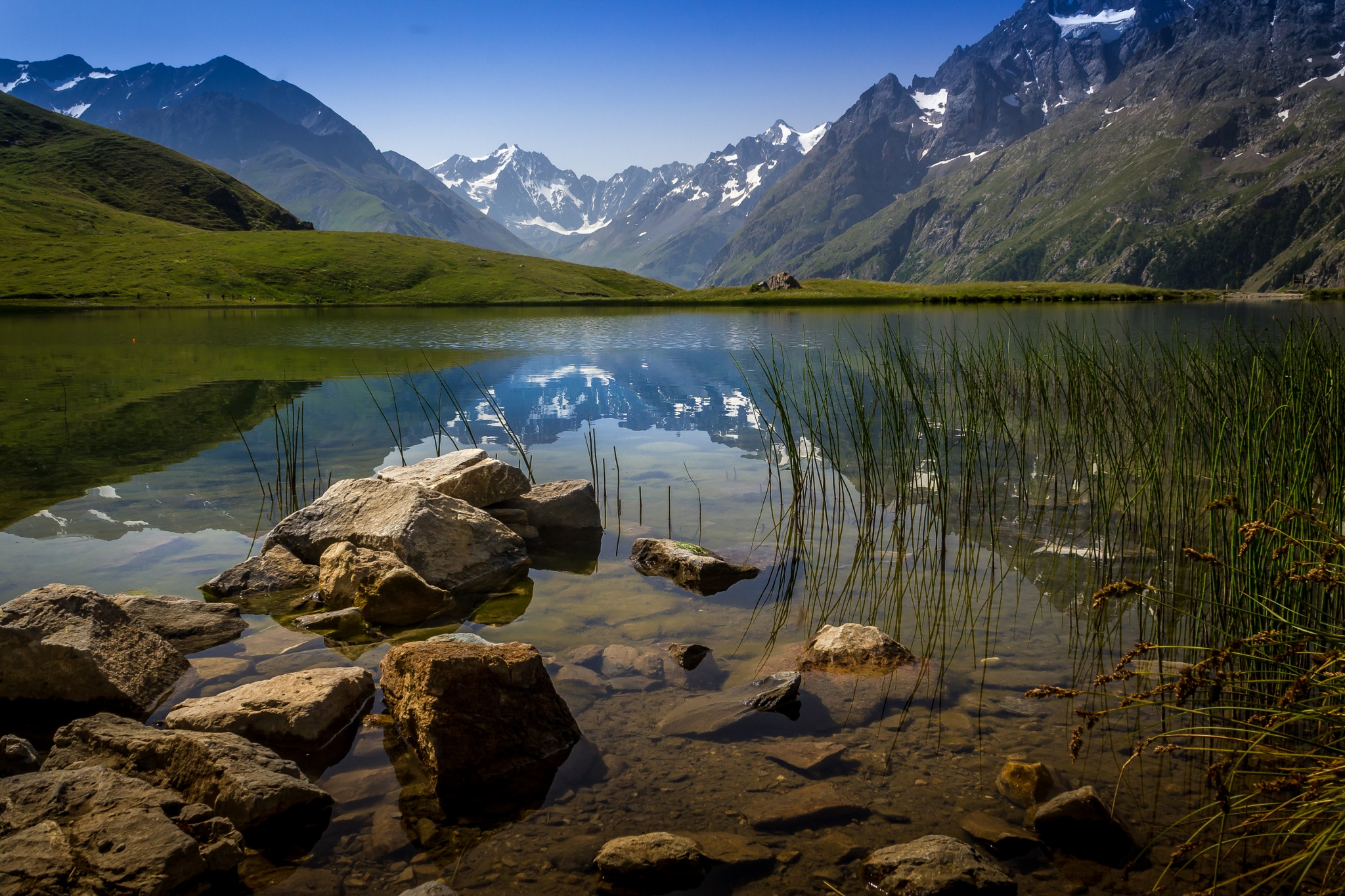 Reflet by Grisel