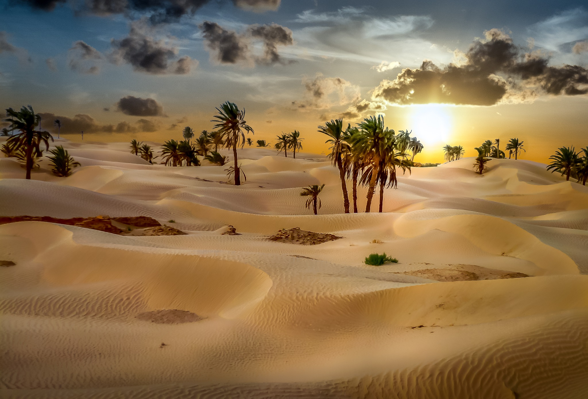 In the desert by Grisel