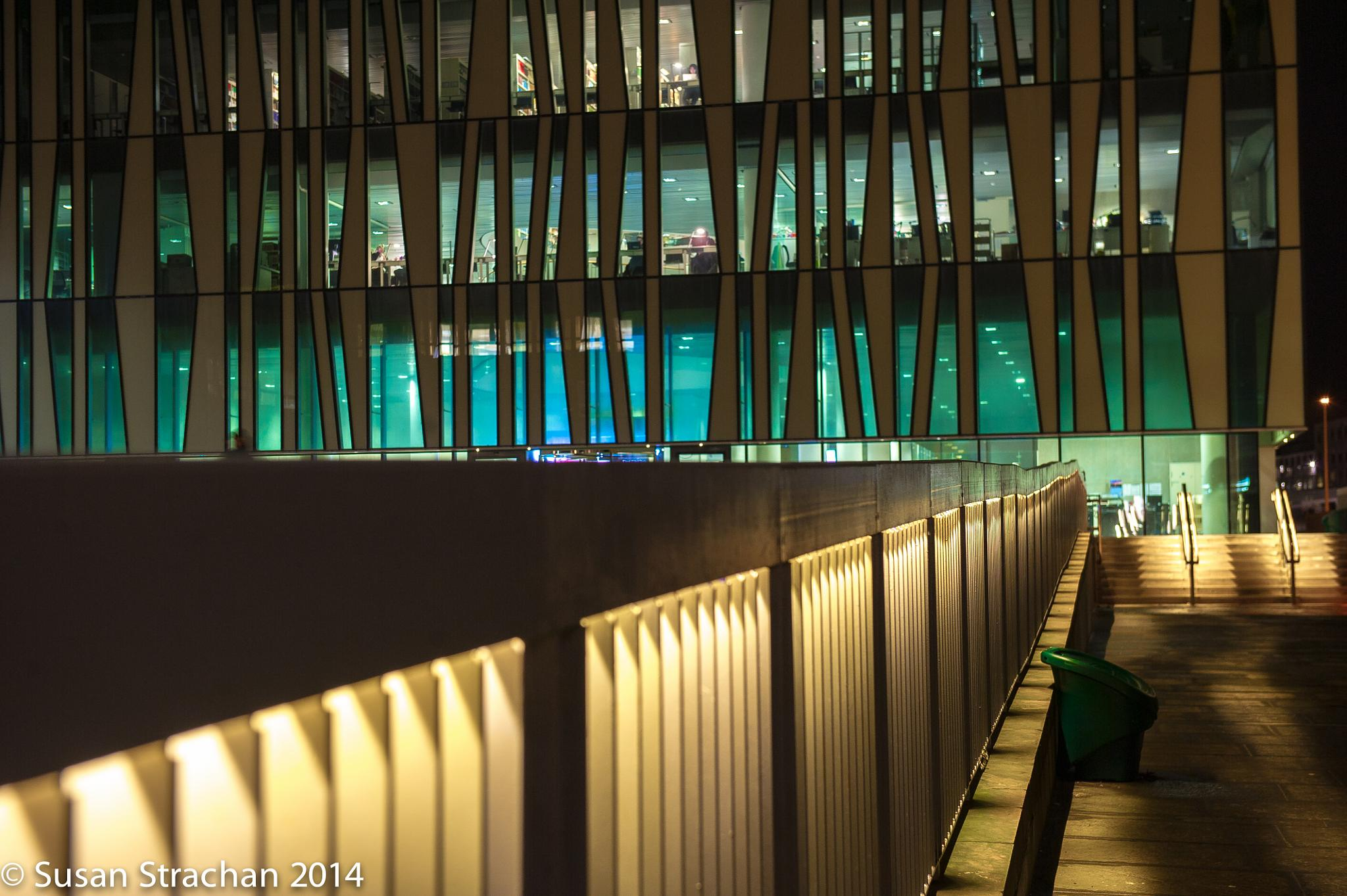 Library at night by Susan Strachan