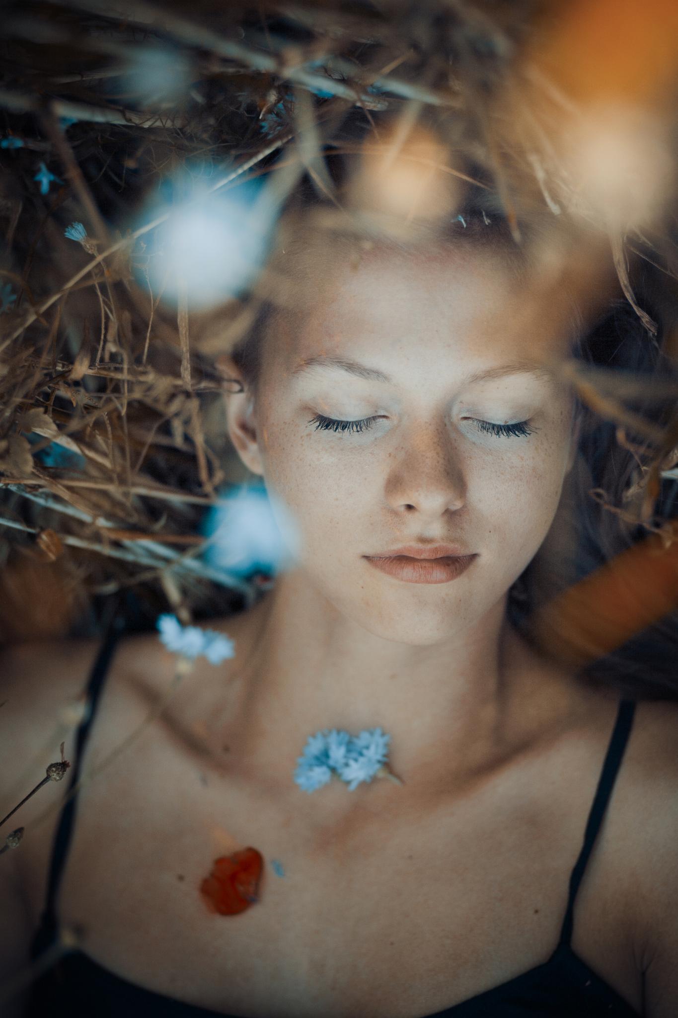 Daydreaming by Ildiko Neer