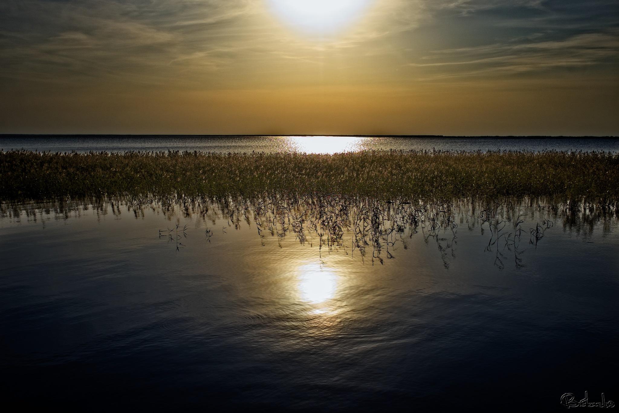 Lake Lubāns. by Uģis Bičkovskis