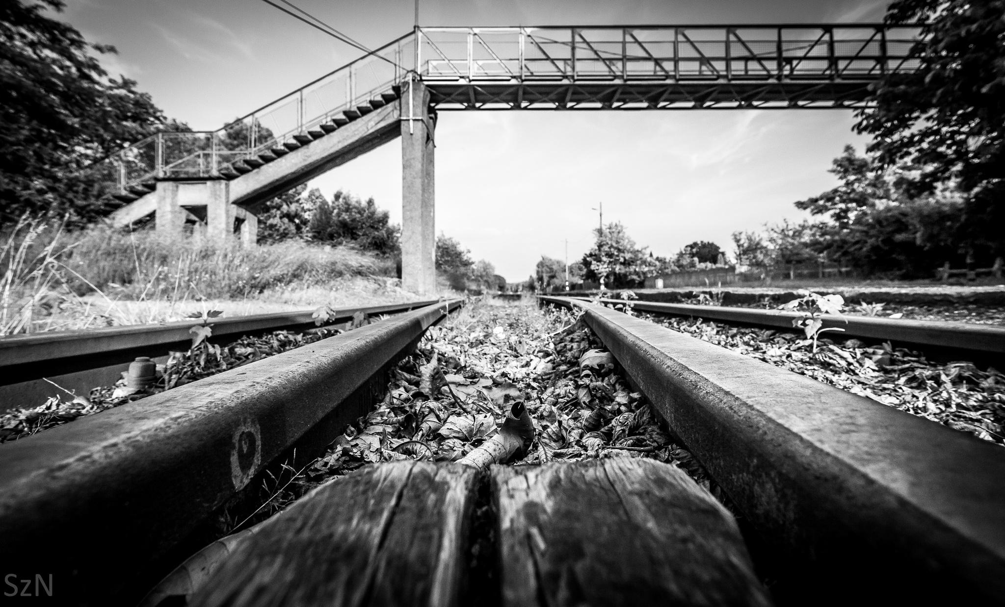 Metal road... by NemesSzilard