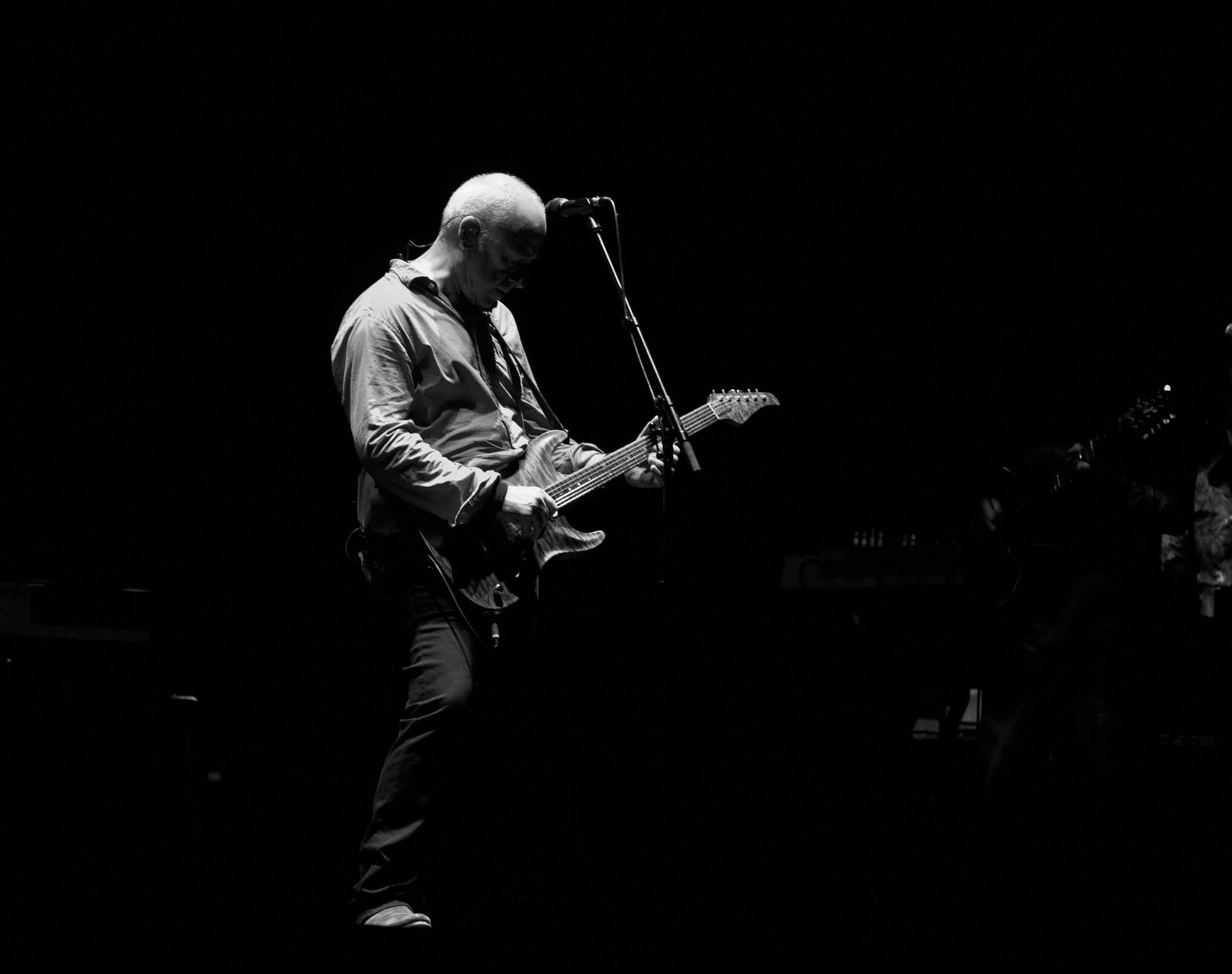 Mark Knoppfler by Joe Muscat