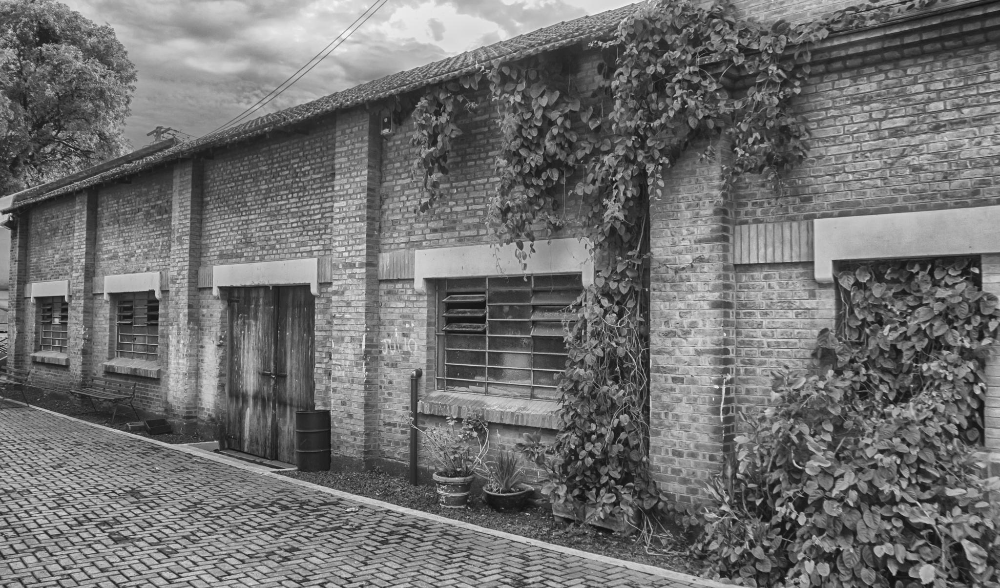 Photo in Architecture #açúcar #azúcar #mill #fábrica #factory #piracicaba