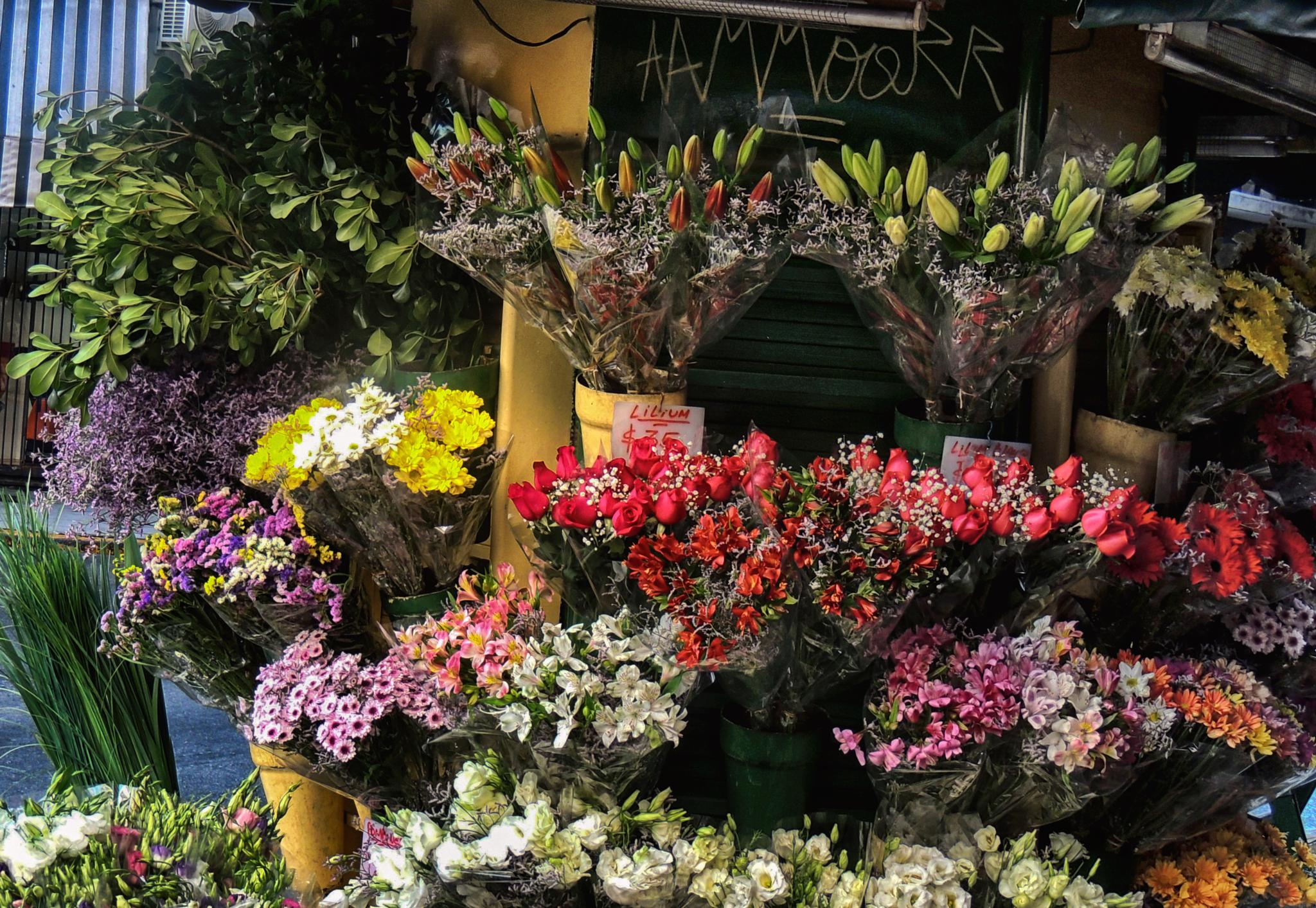 Photo in Street Photography #buenos aires #argentina #flowers #flores