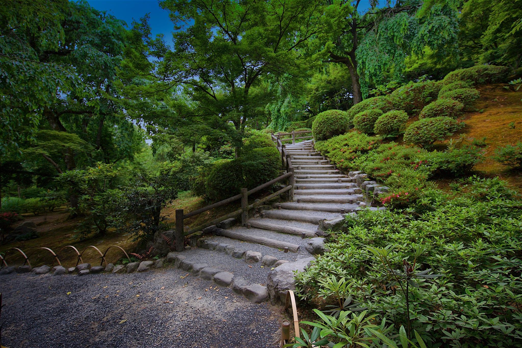 Kyoto Gardens by Tom K