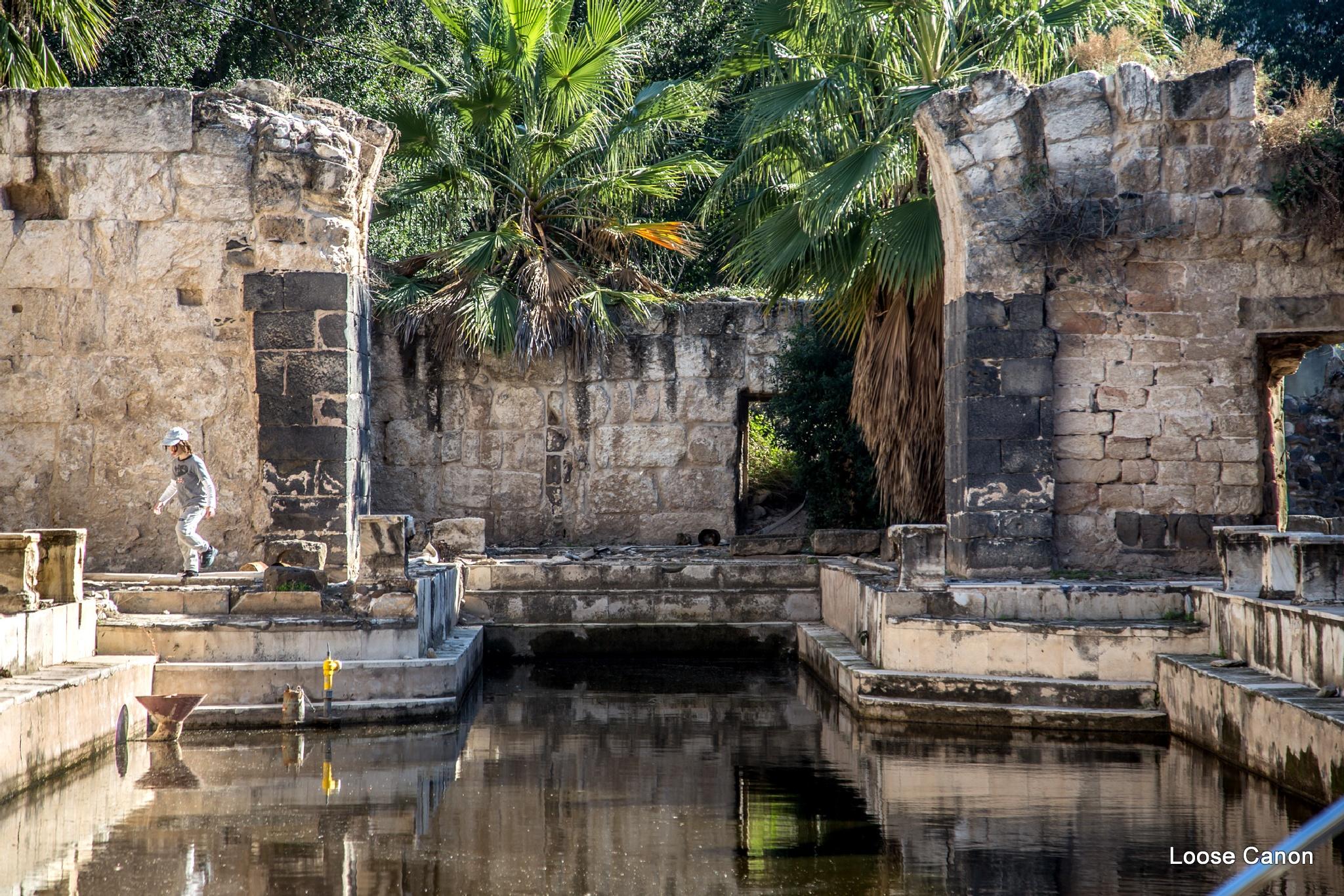 Ancient splendor by LooseCanon
