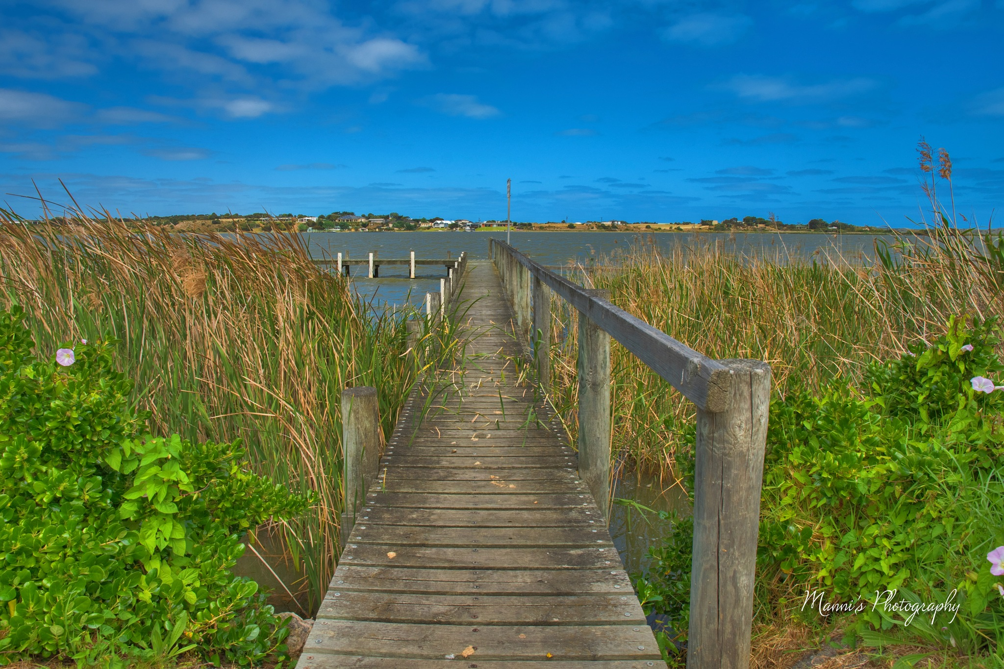 Jetty by Manni