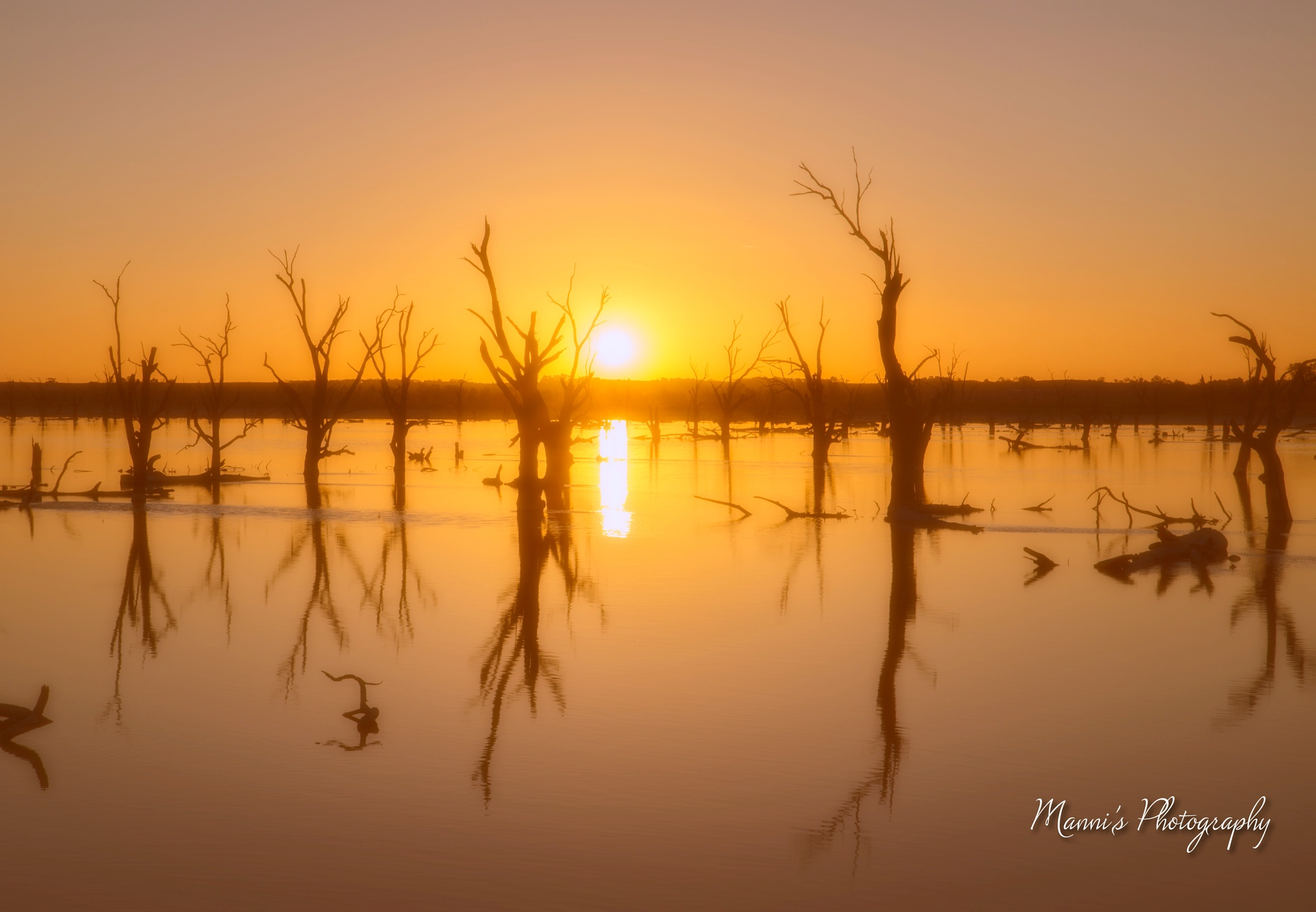 Copdogla Swamp by Manni