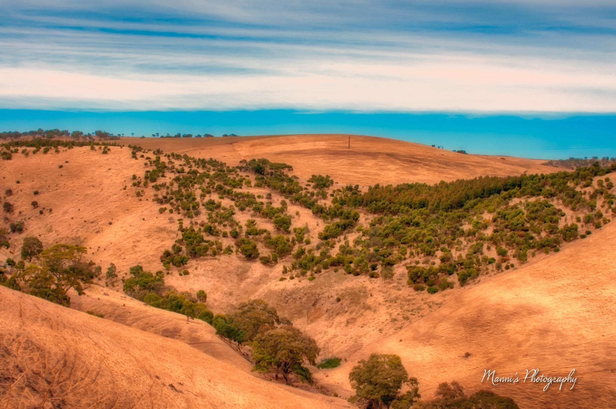Landscape by Manni