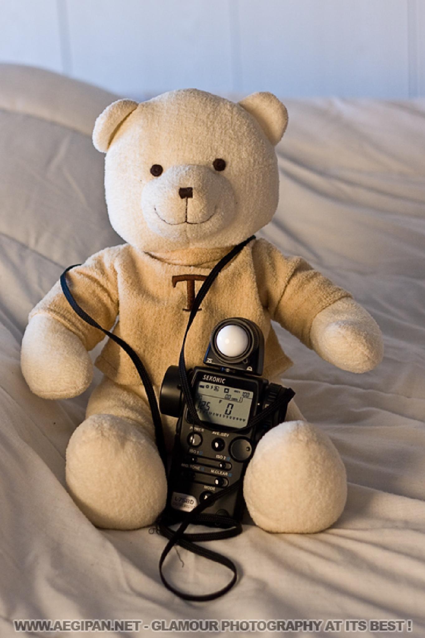 Photo in Random #aegipan #teddy #bear #lightmaster #photography #tool #bed #natural light