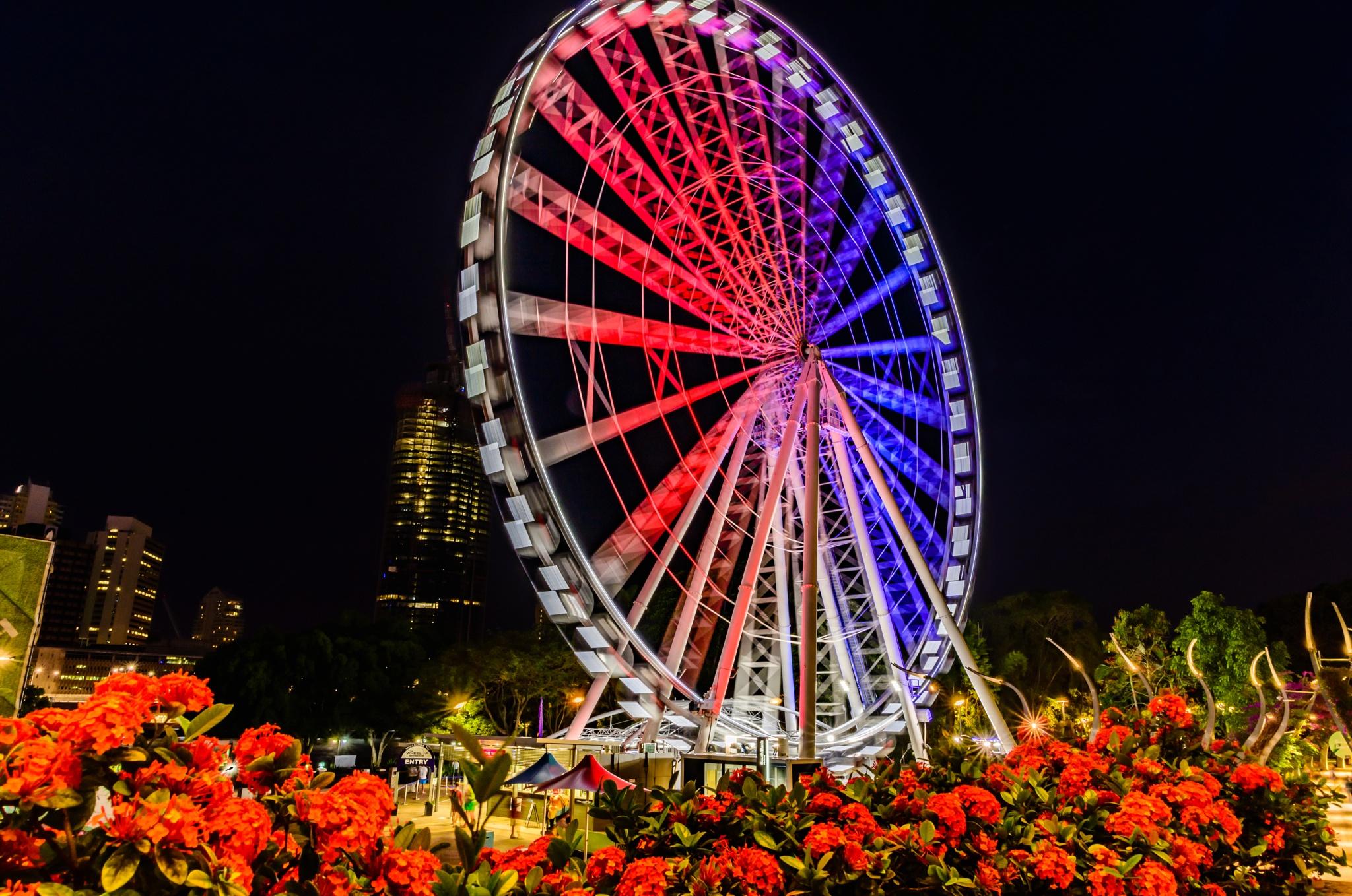 Wheel of Brisbane - Paris Tribute by Mick Glass
