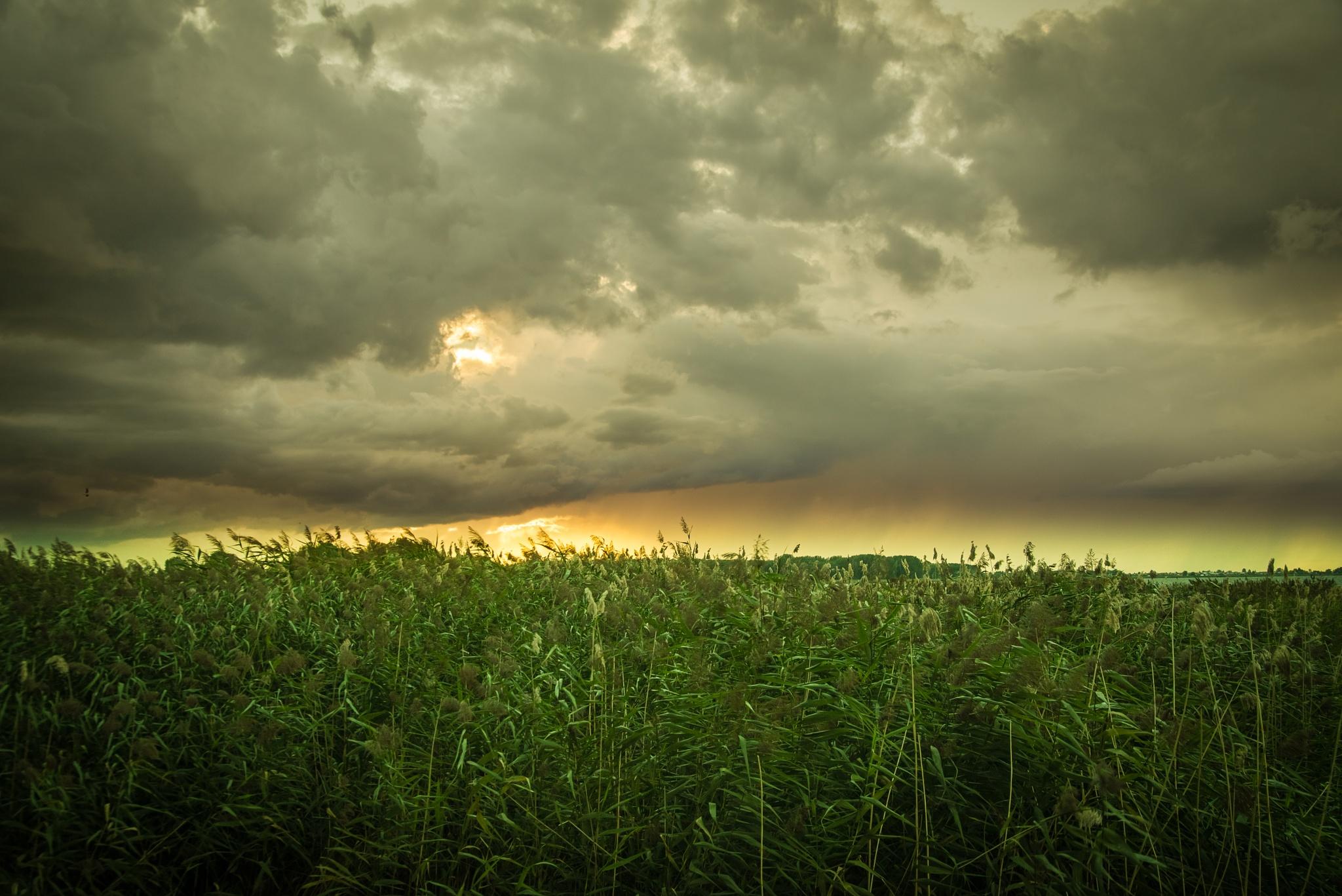 Dramatic sunset by Larisa Makarova