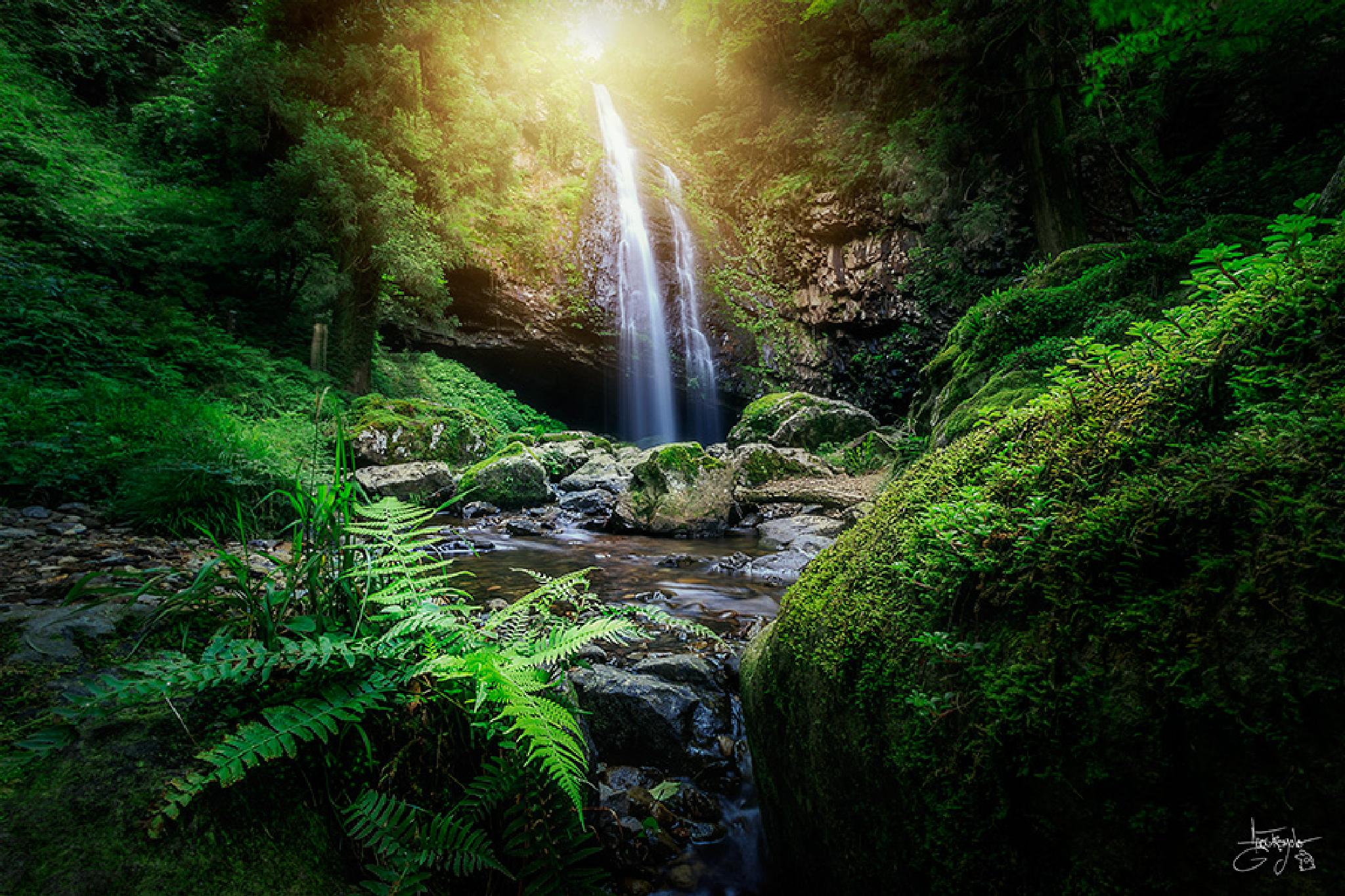 Photo in Landscape #japan #japanese #waterfall #water #shimane #izumo #jugle #forest #rain #rainforest #fern #humid #long exposure #sun #sunray #ray #amazing #stream #creek
