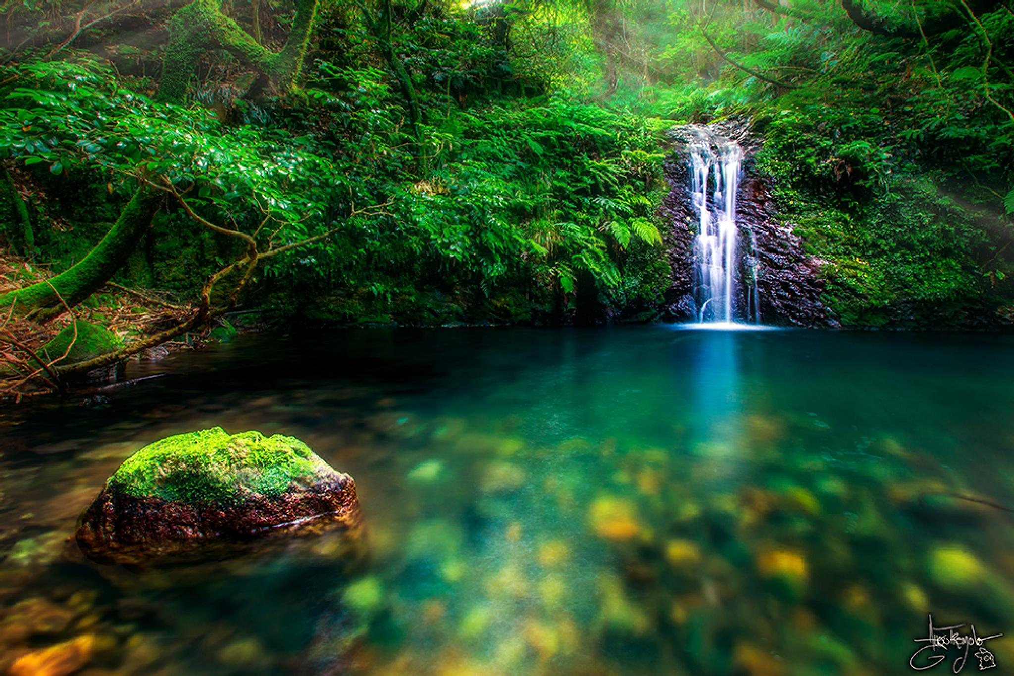 Photo in Landscape #japan #forest #waterfall #lake #water #humid #humidity #long exposure #silky water #rainforest #wood #blue #green #fern #orton
