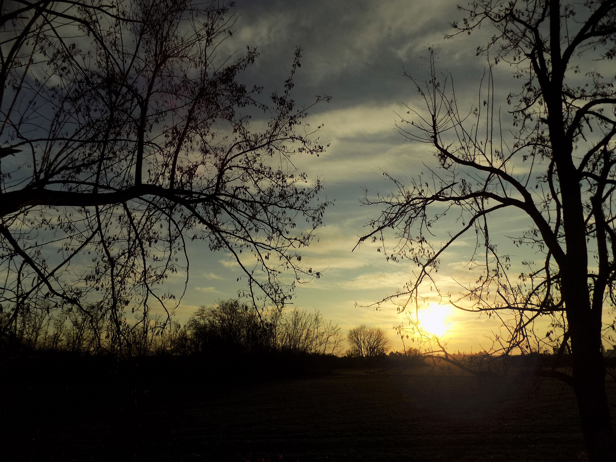 light and shade, of the sunset by Cesare Vatrano