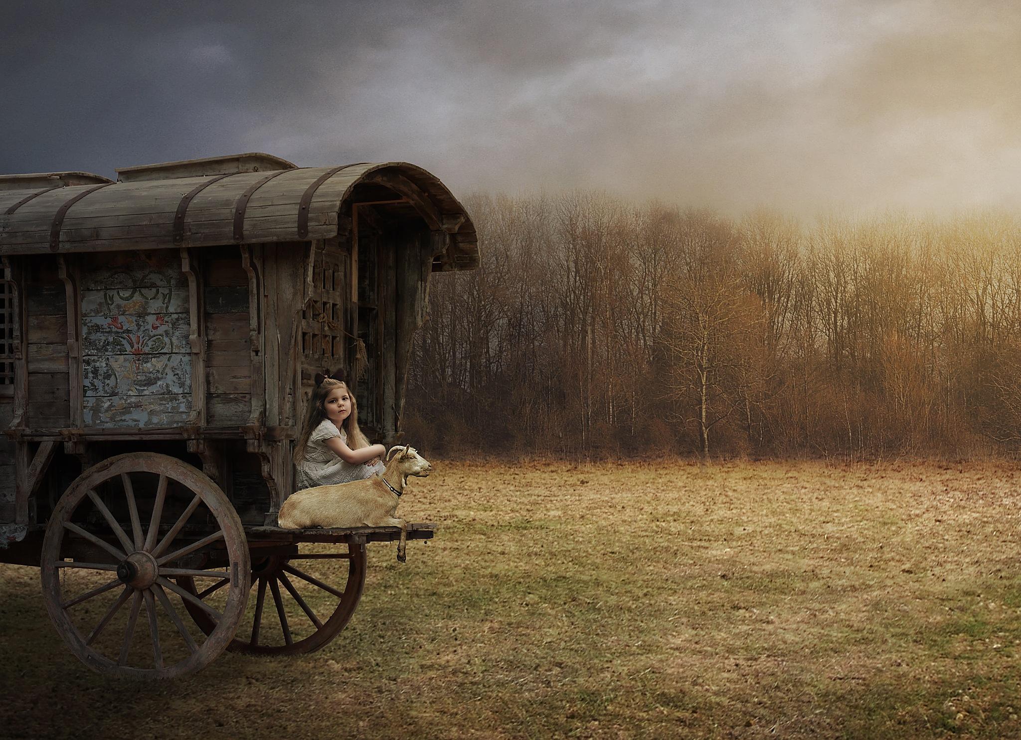 TRAVELING COMPANIONS by VJEKO
