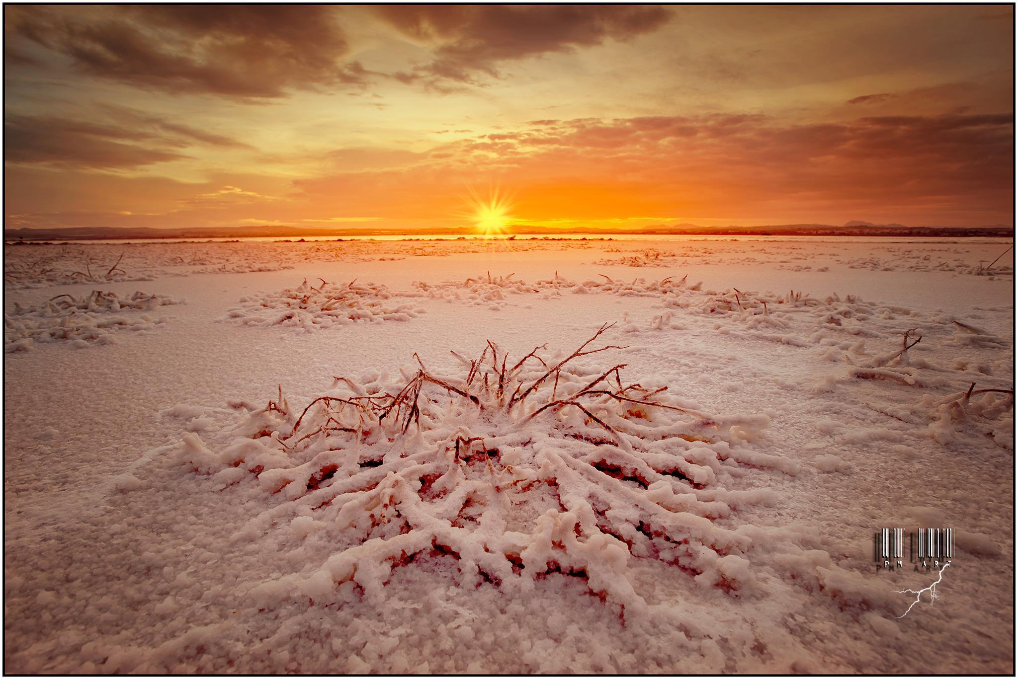 Salt crystallization by Patricio Morales Perez