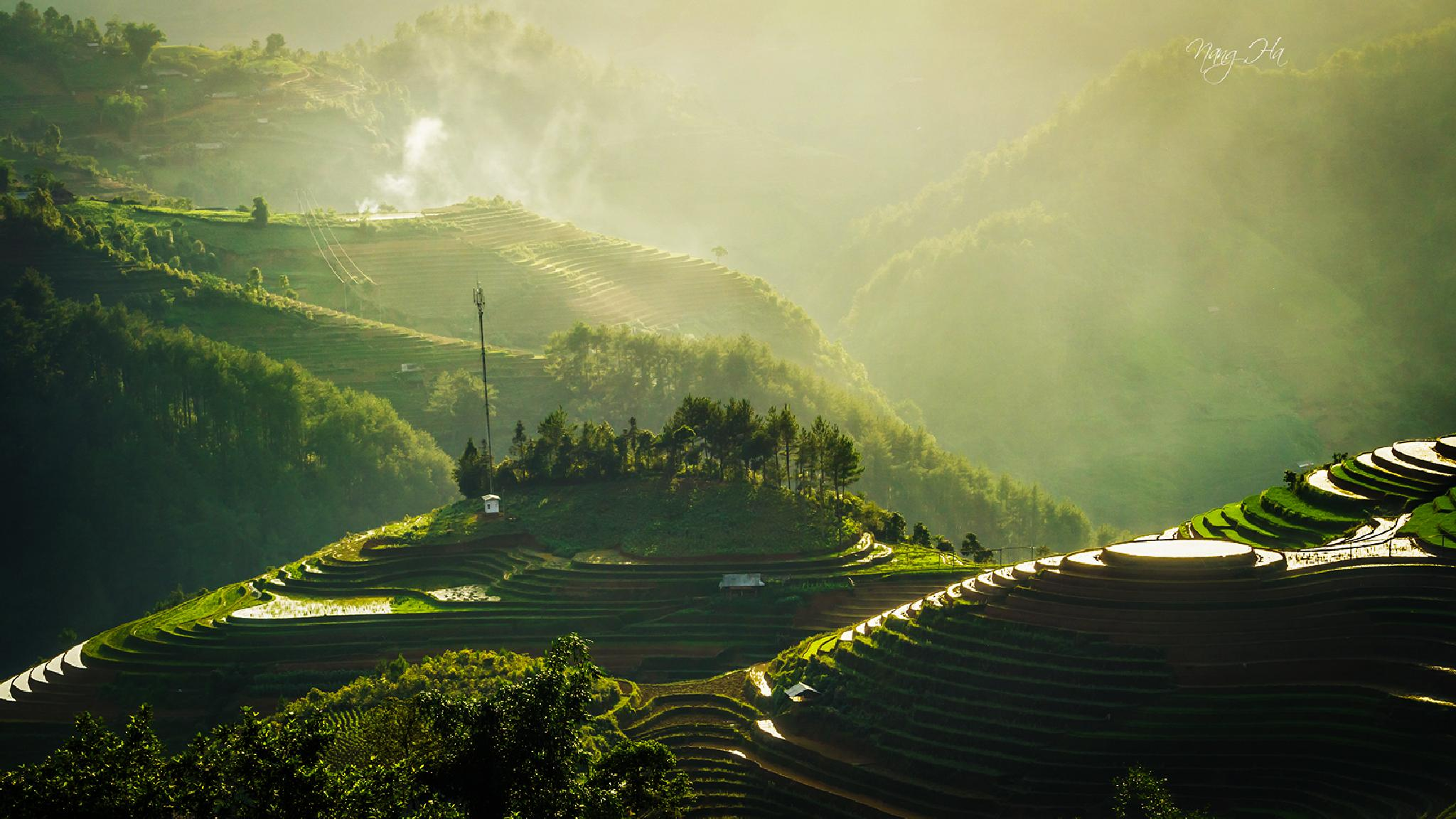 Terraced fields in the sun by phuonglinhframing