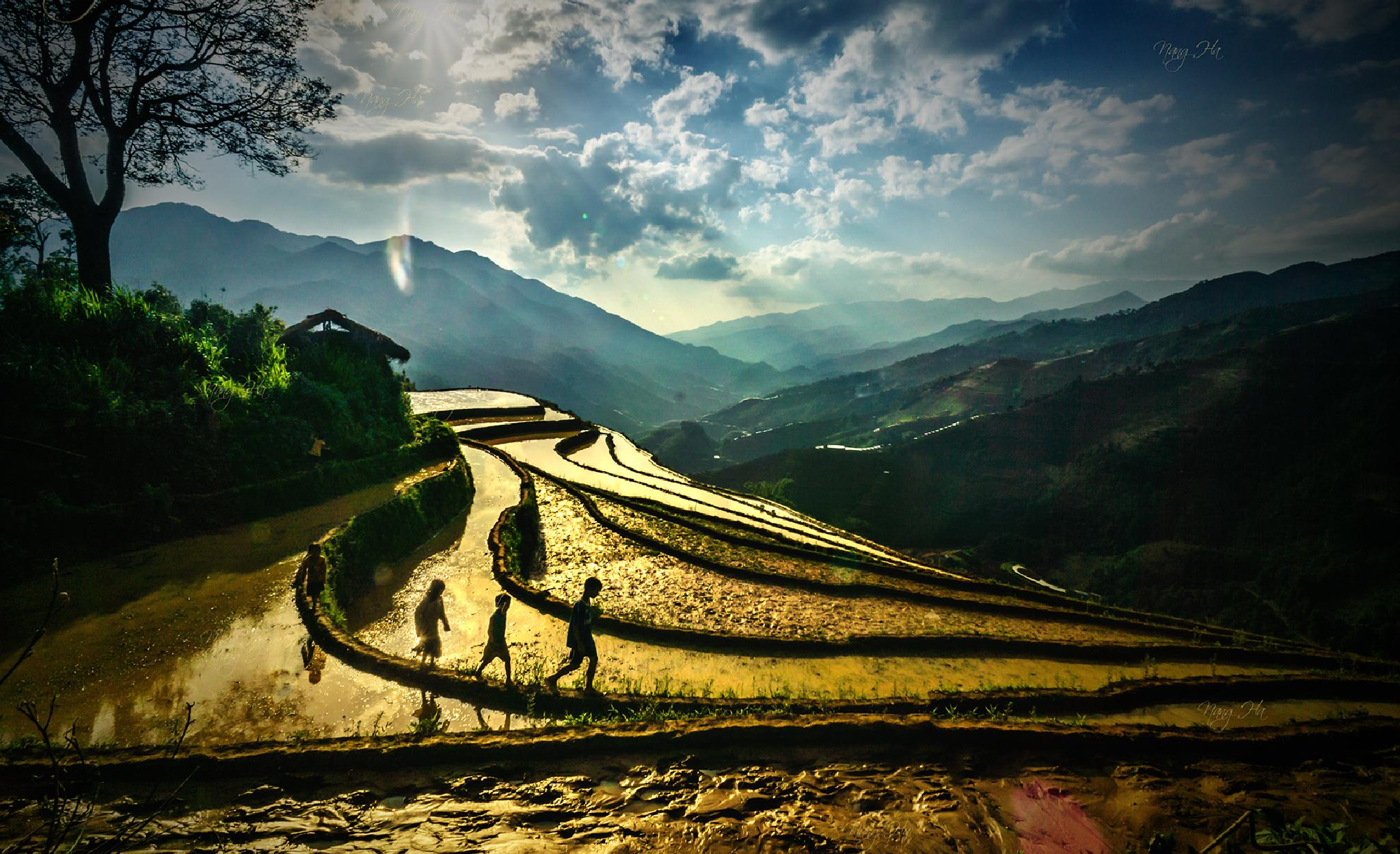 Photo in Travel #terraces #children #mu cang chai #viet nam