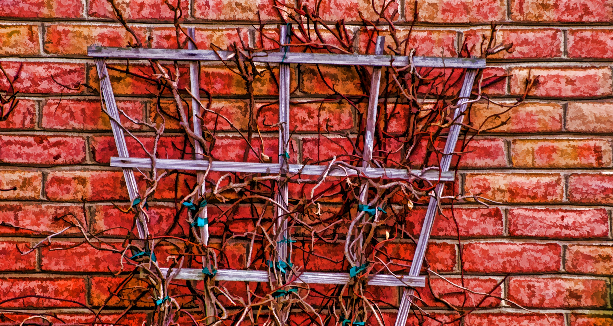 Nature'sWiring II by JohnEllingson