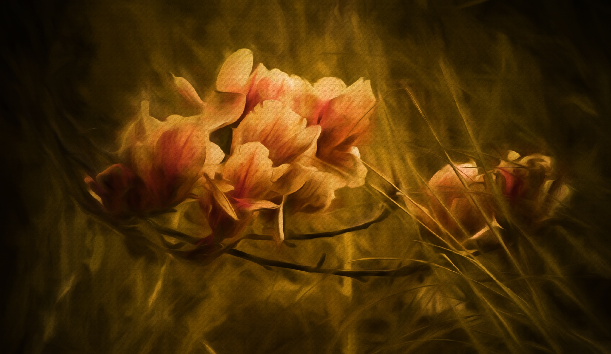 Magnolia Dreams 433 by JohnEllingson