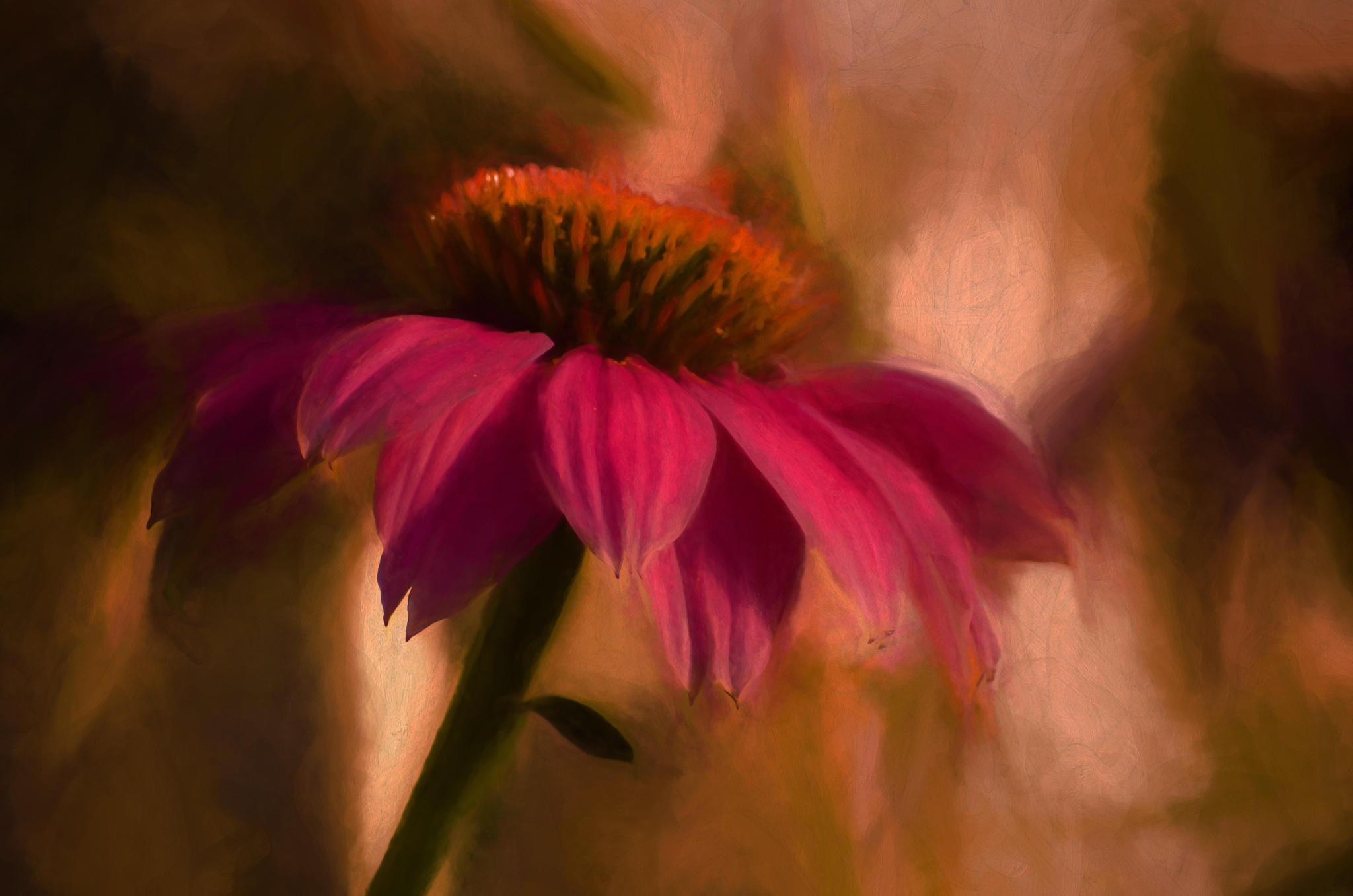 Summer Warmth by JohnEllingson