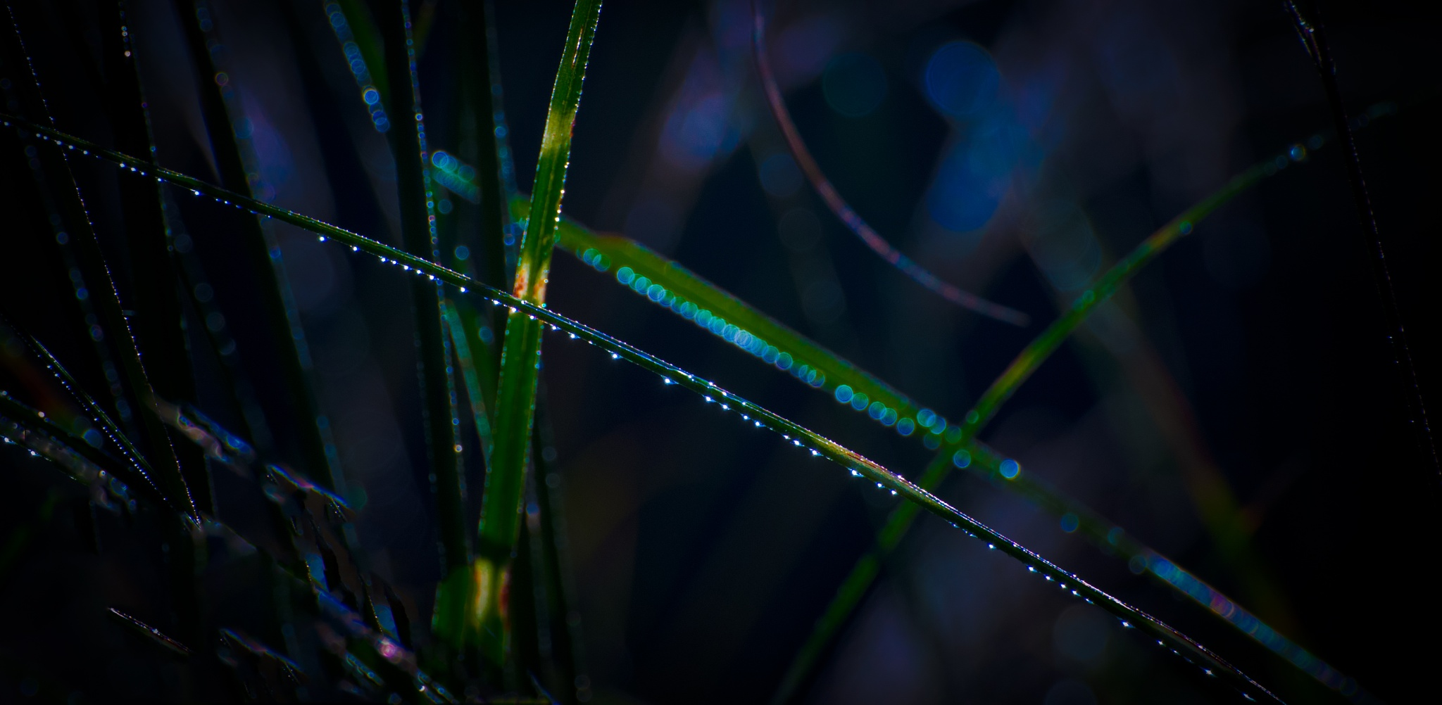 Dew Line by JohnEllingson