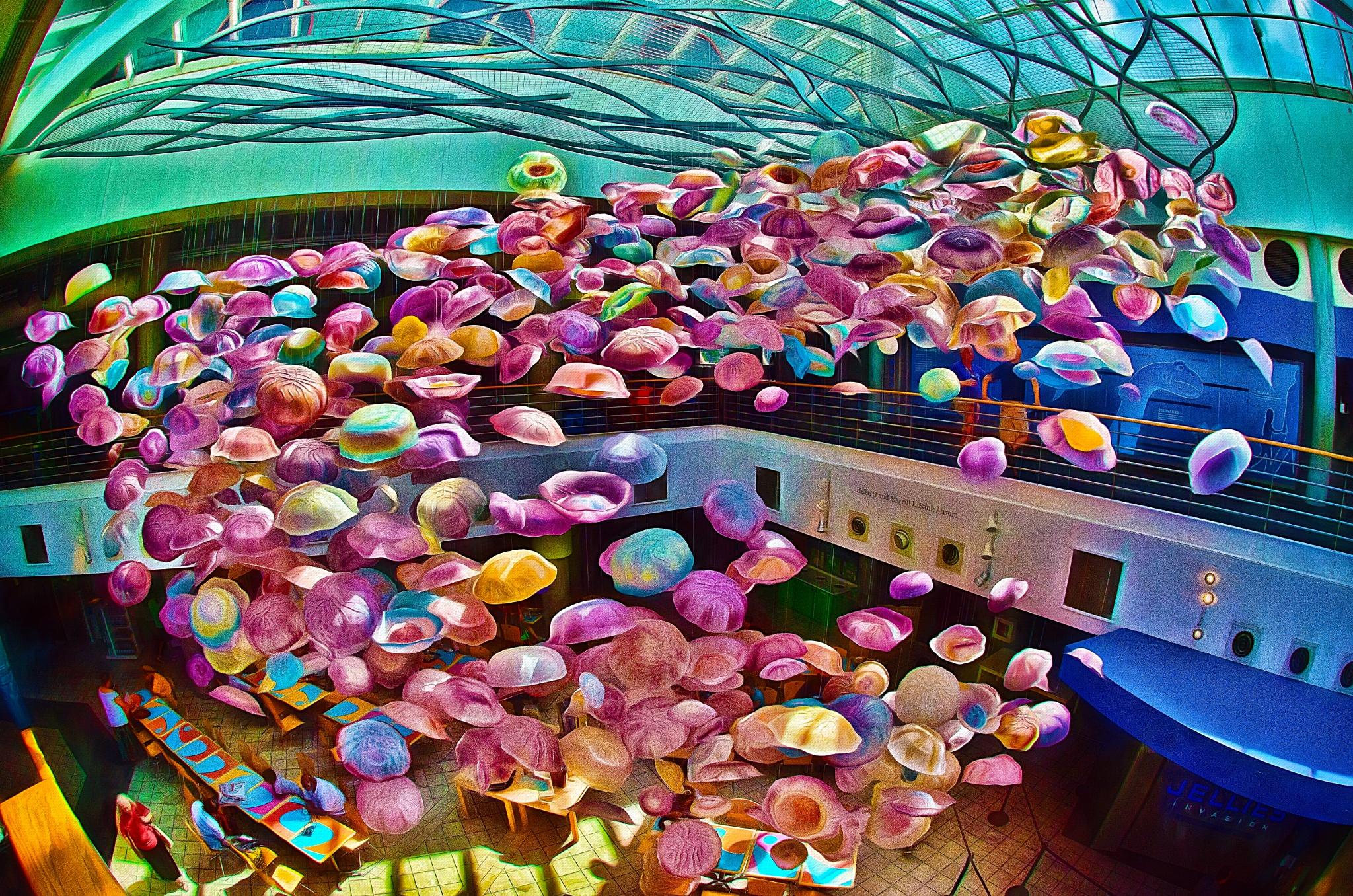 Baltimore Aquarium III by JohnEllingson