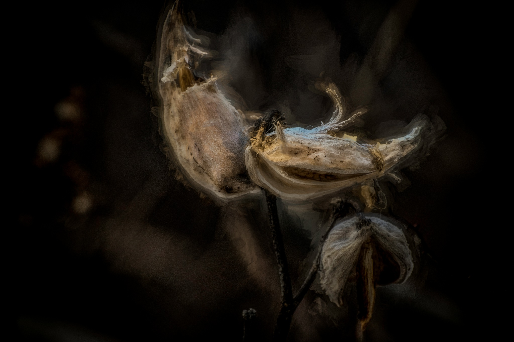 Final Decay by JohnEllingson