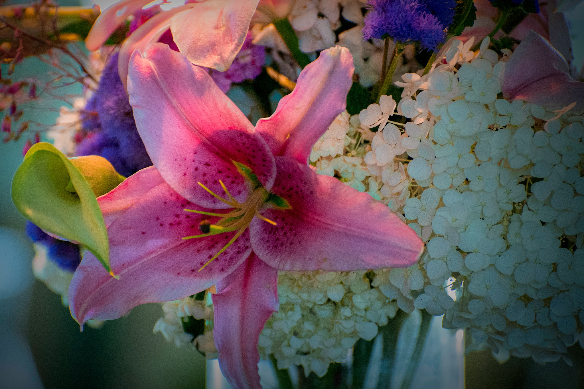 Floral 213 by JohnEllingson