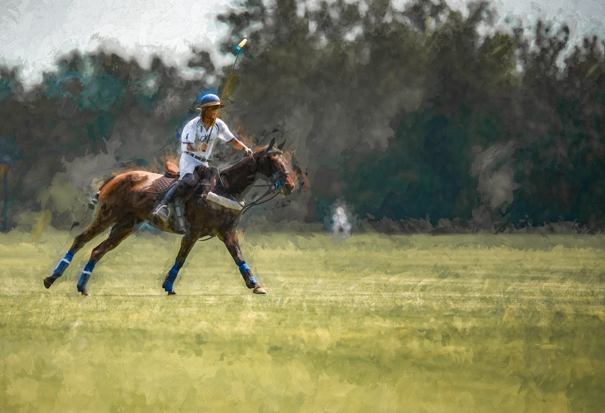 New Polo 6 by JohnEllingson