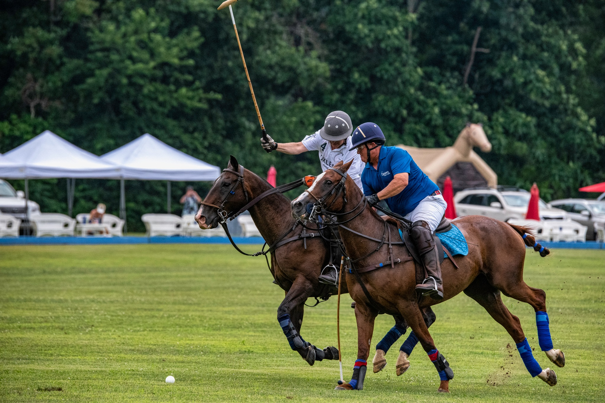 Polo 19 by JohnEllingson