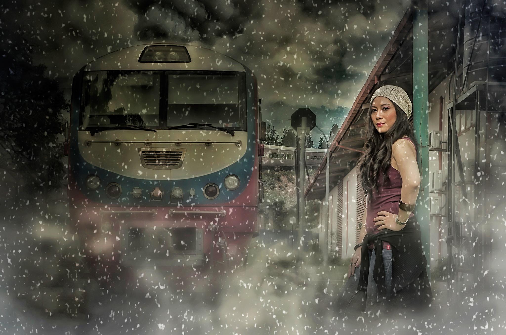 The Polar Express by Thomas D. Kok