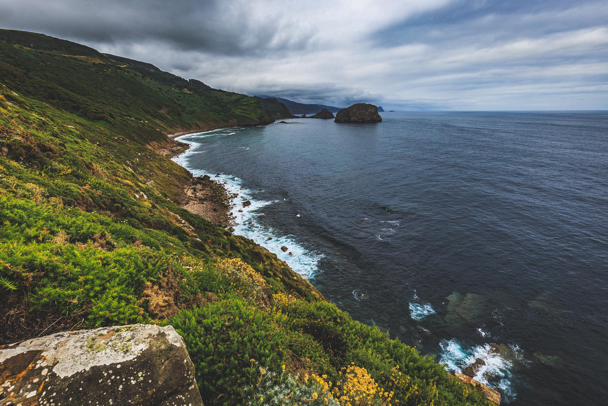 on the coast by Andrei