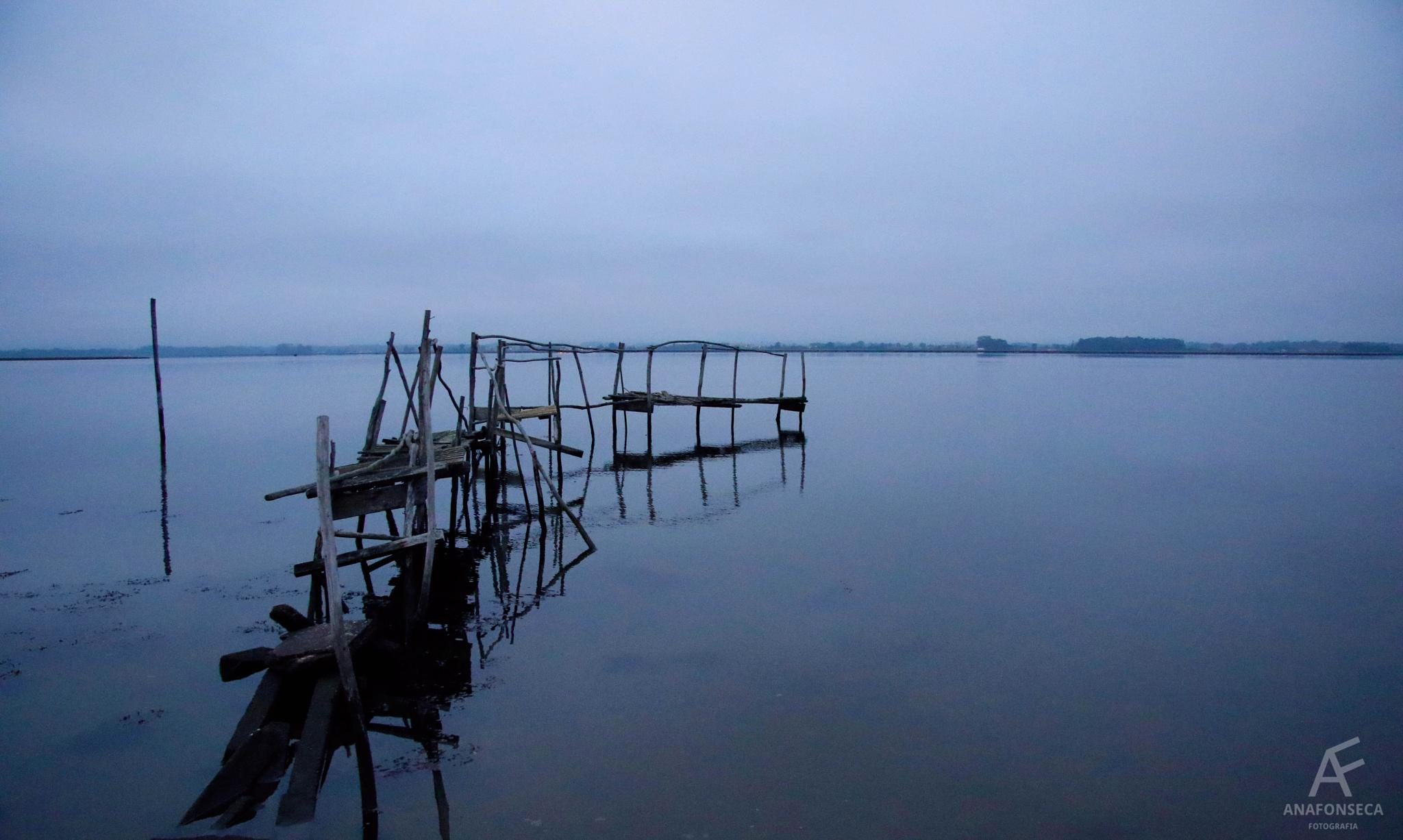 Photo in Landscape #morning #water #sea #pied