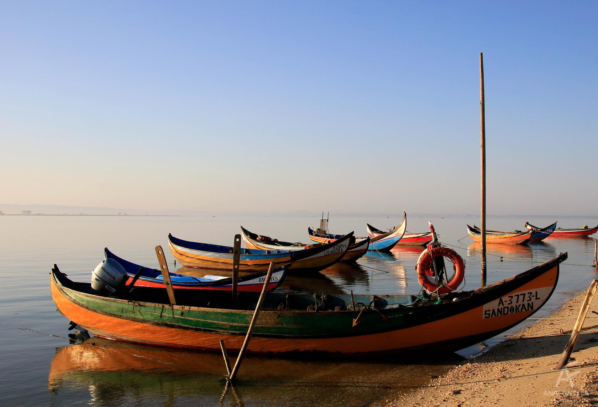 Boats by Ana Paula Fonseca