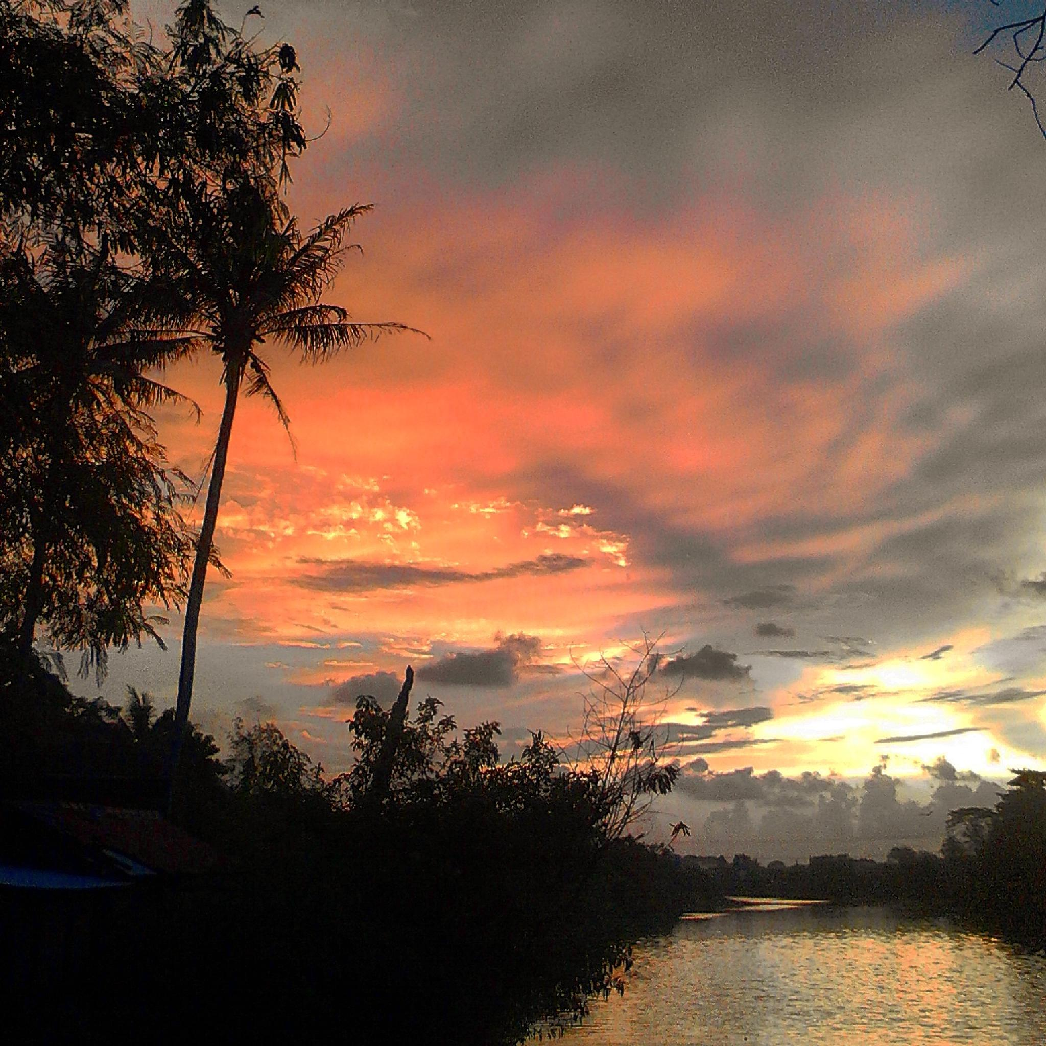 Photo in Nature #sunset #river #rachmanliving