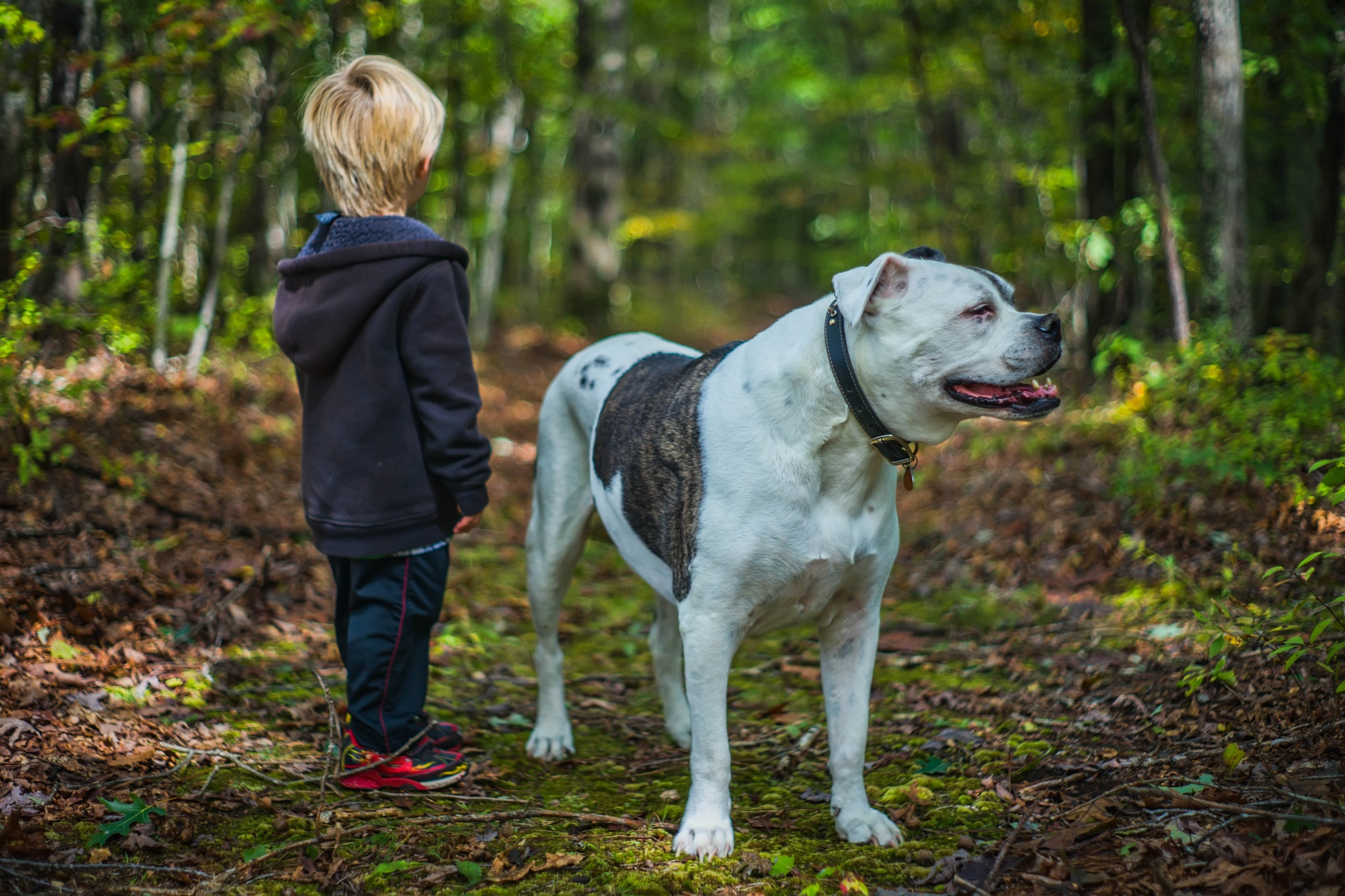 A dog and his boy. by Chris Rand