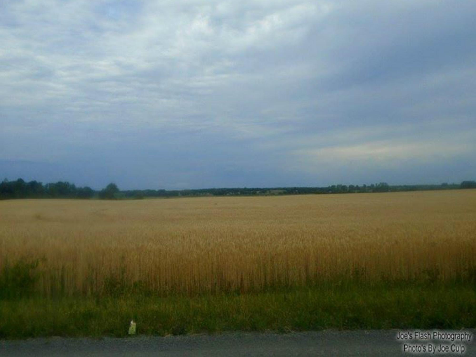 Rainclouds over the wheatfields of prince Edward county by Joe's Flash Photography...Photo's By Joe Culp
