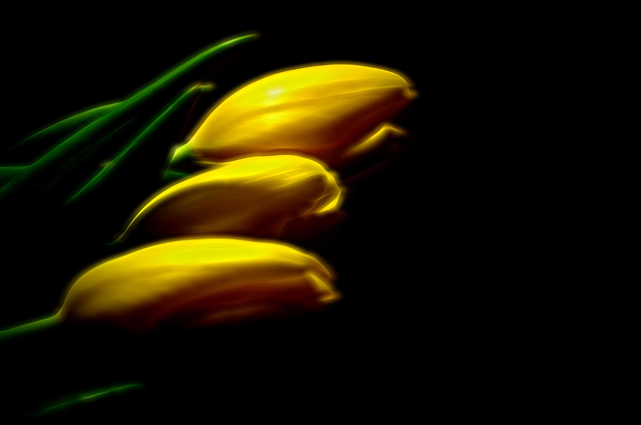 Yellow In Three by Kenny Simpson