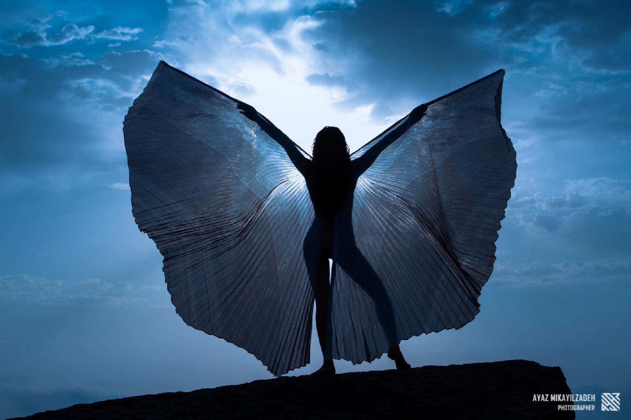 Butterfly effect by Ayaz Mikayilzadeh
