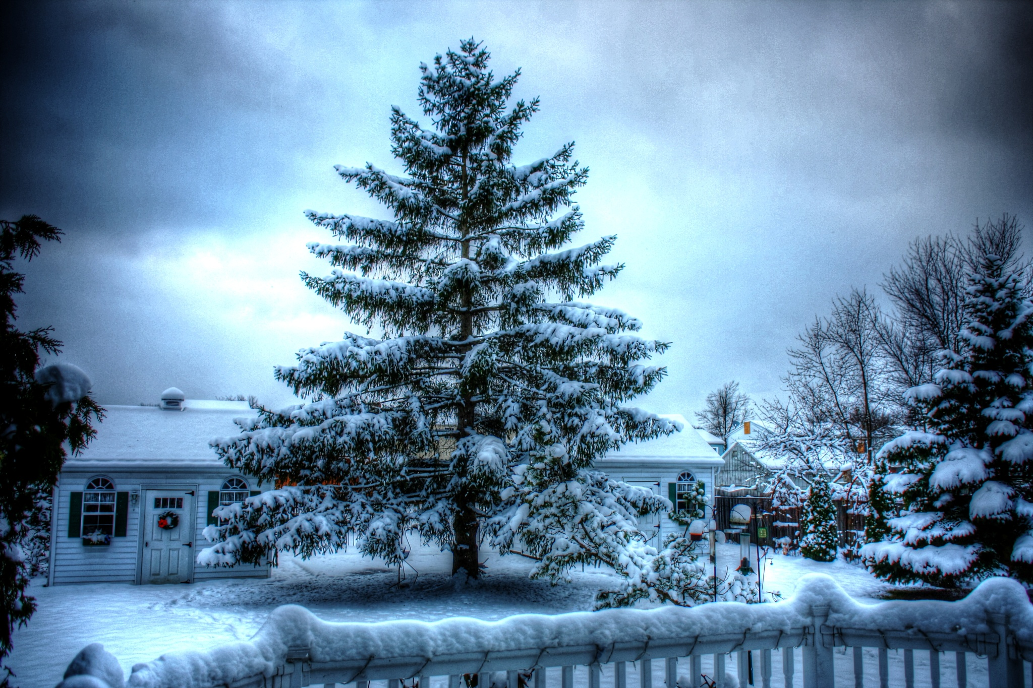 Happy Holidays by JackieandTom Daunce