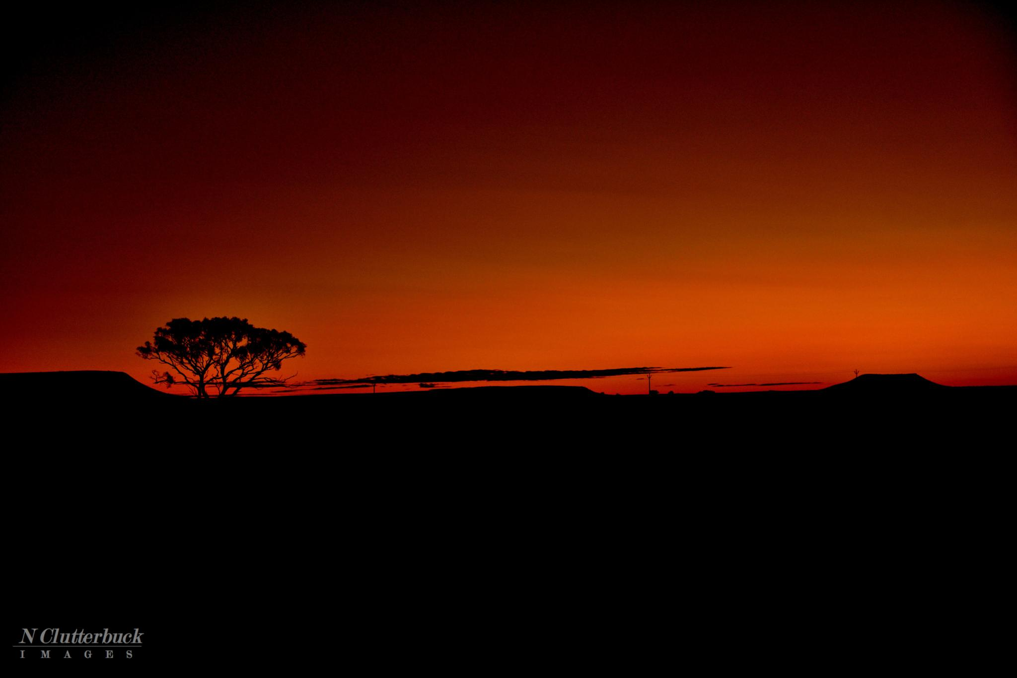 Sunrise by Tash Clutterbuck
