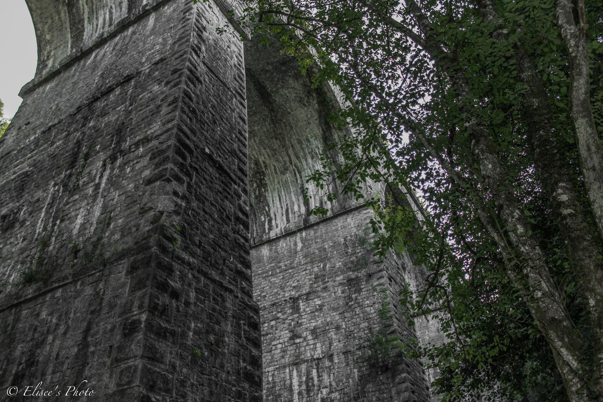 pont romain a Virelles by Elisée