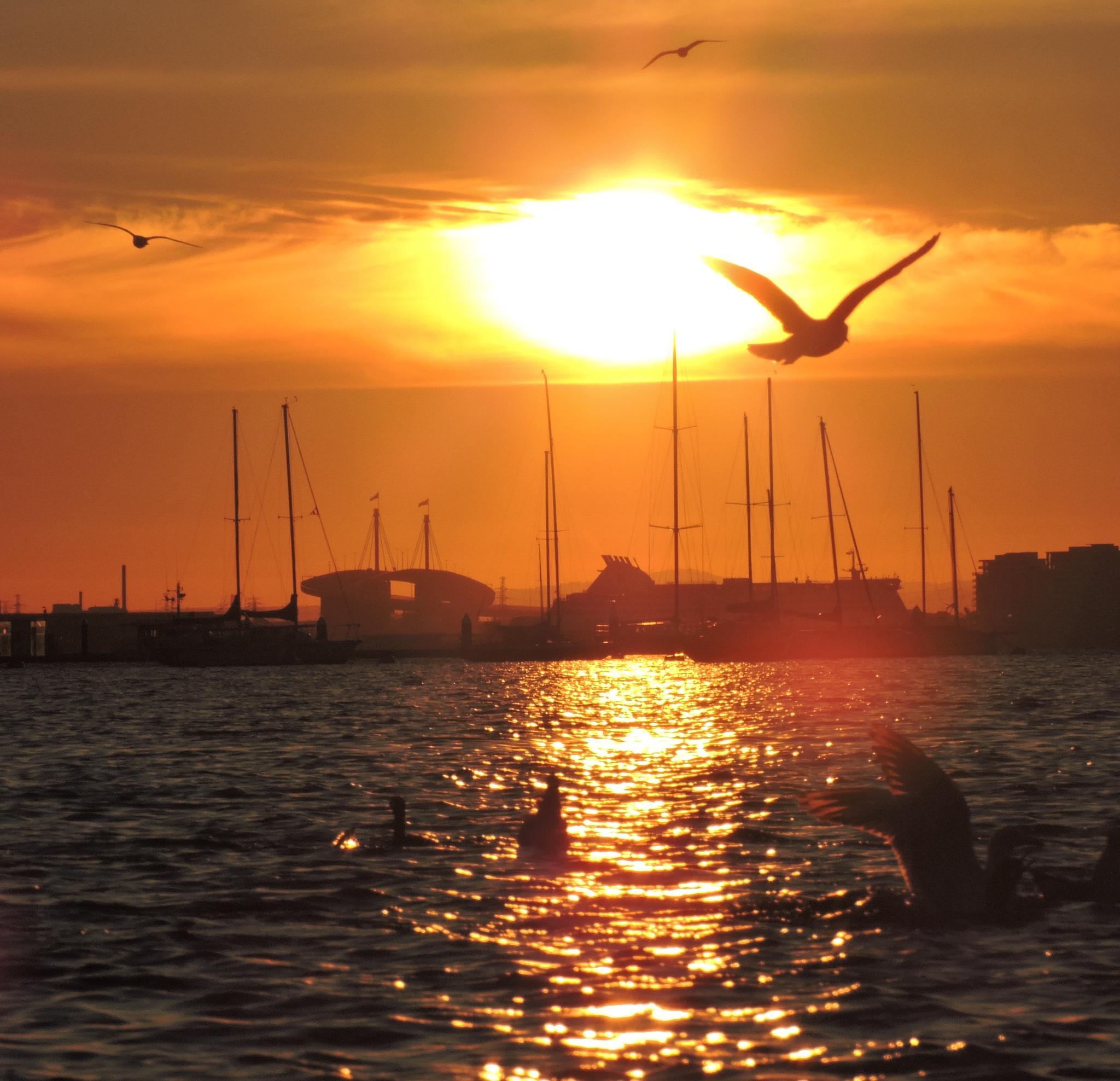 Sunset St Kilda Pier by RachW