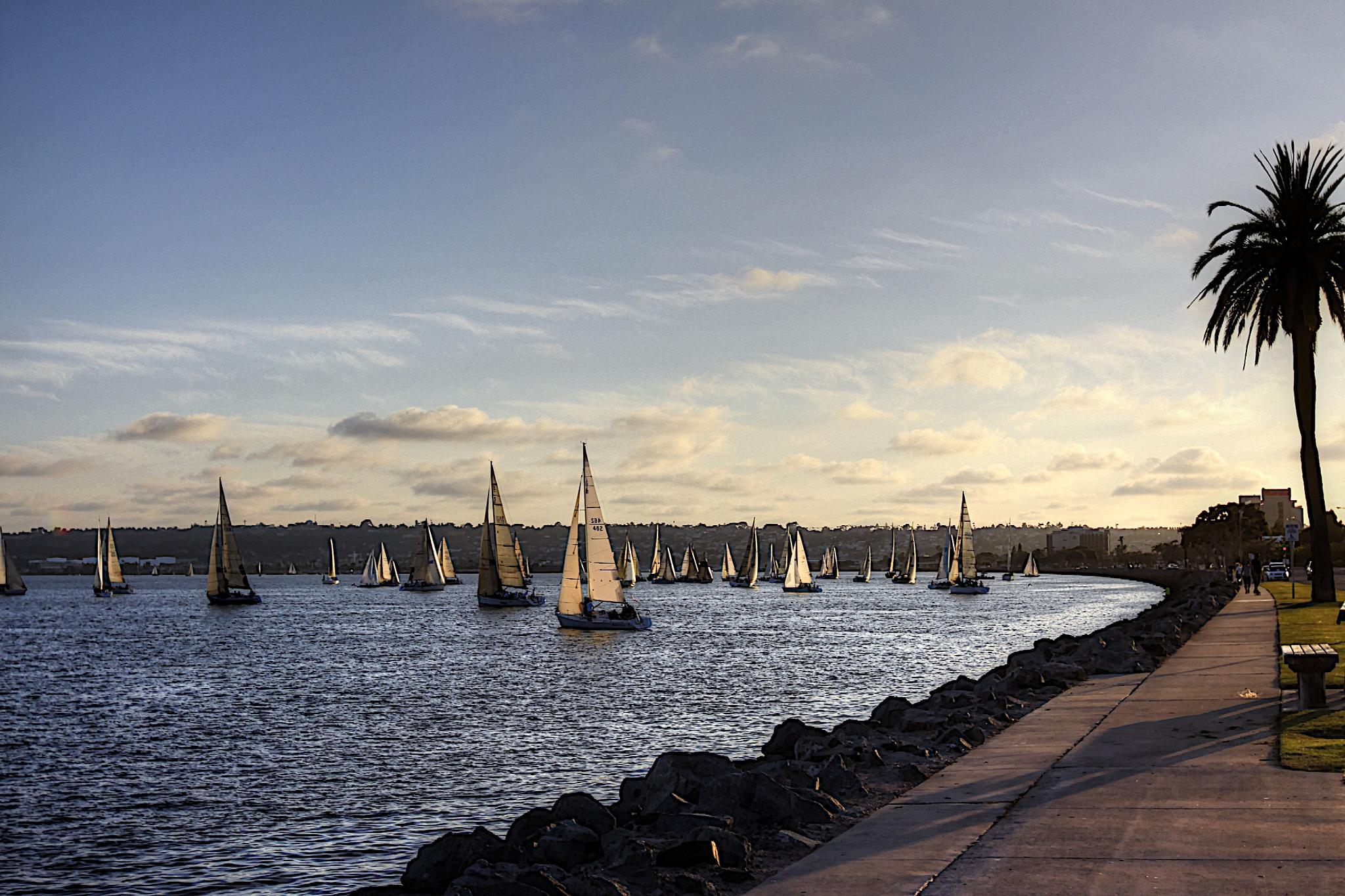 CA sailboats by Melanie Smith